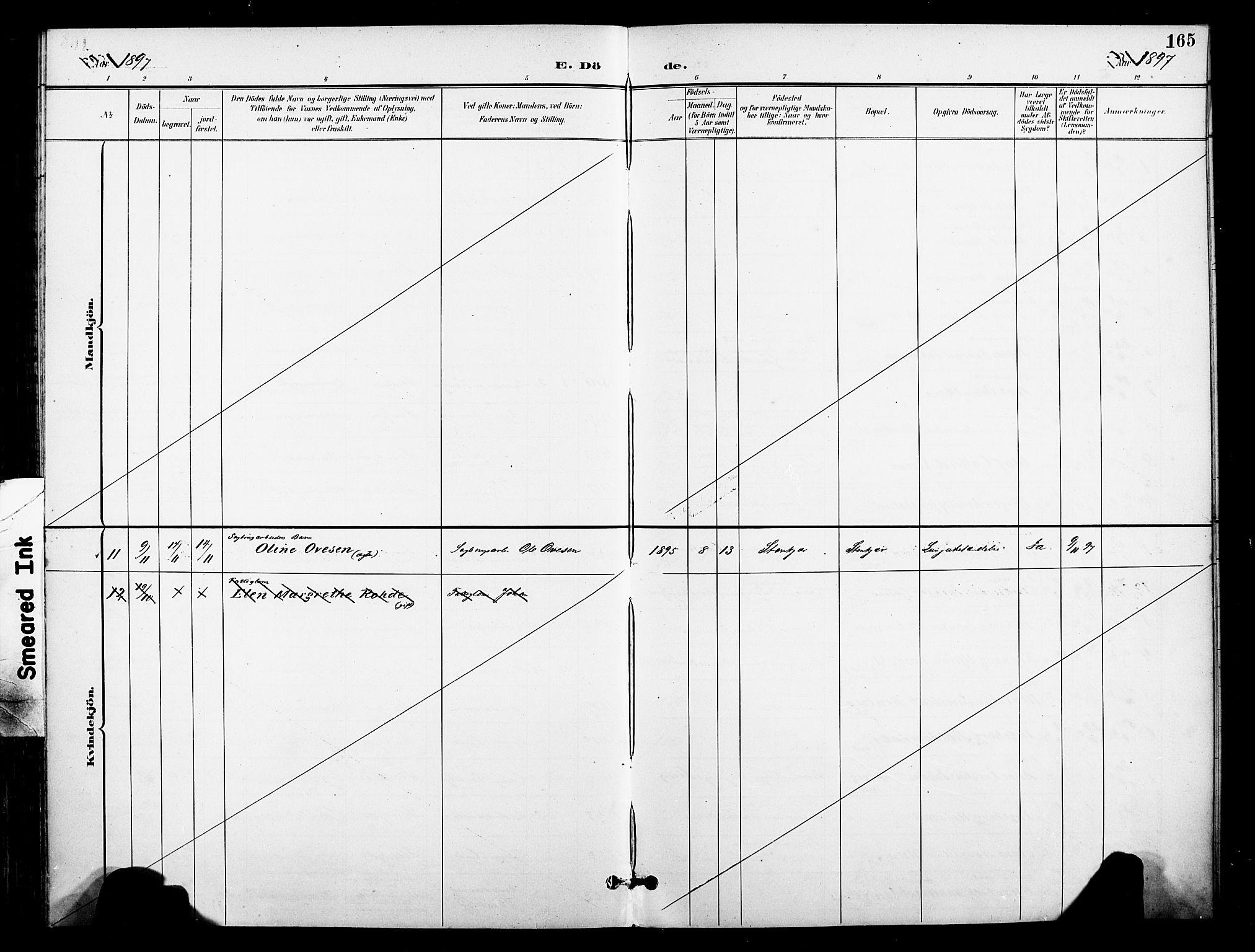 SAT, Ministerialprotokoller, klokkerbøker og fødselsregistre - Nord-Trøndelag, 739/L0372: Ministerialbok nr. 739A04, 1895-1903, s. 165