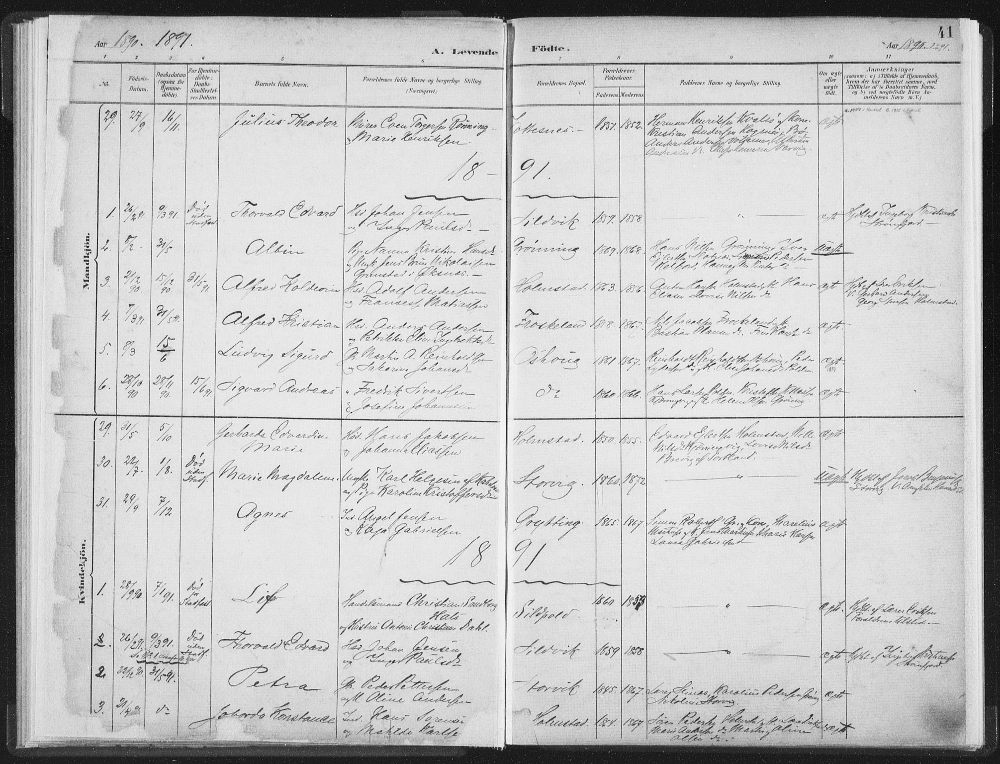 SAT, Ministerialprotokoller, klokkerbøker og fødselsregistre - Nordland, 890/L1286: Ministerialbok nr. 890A01, 1882-1902, s. 41