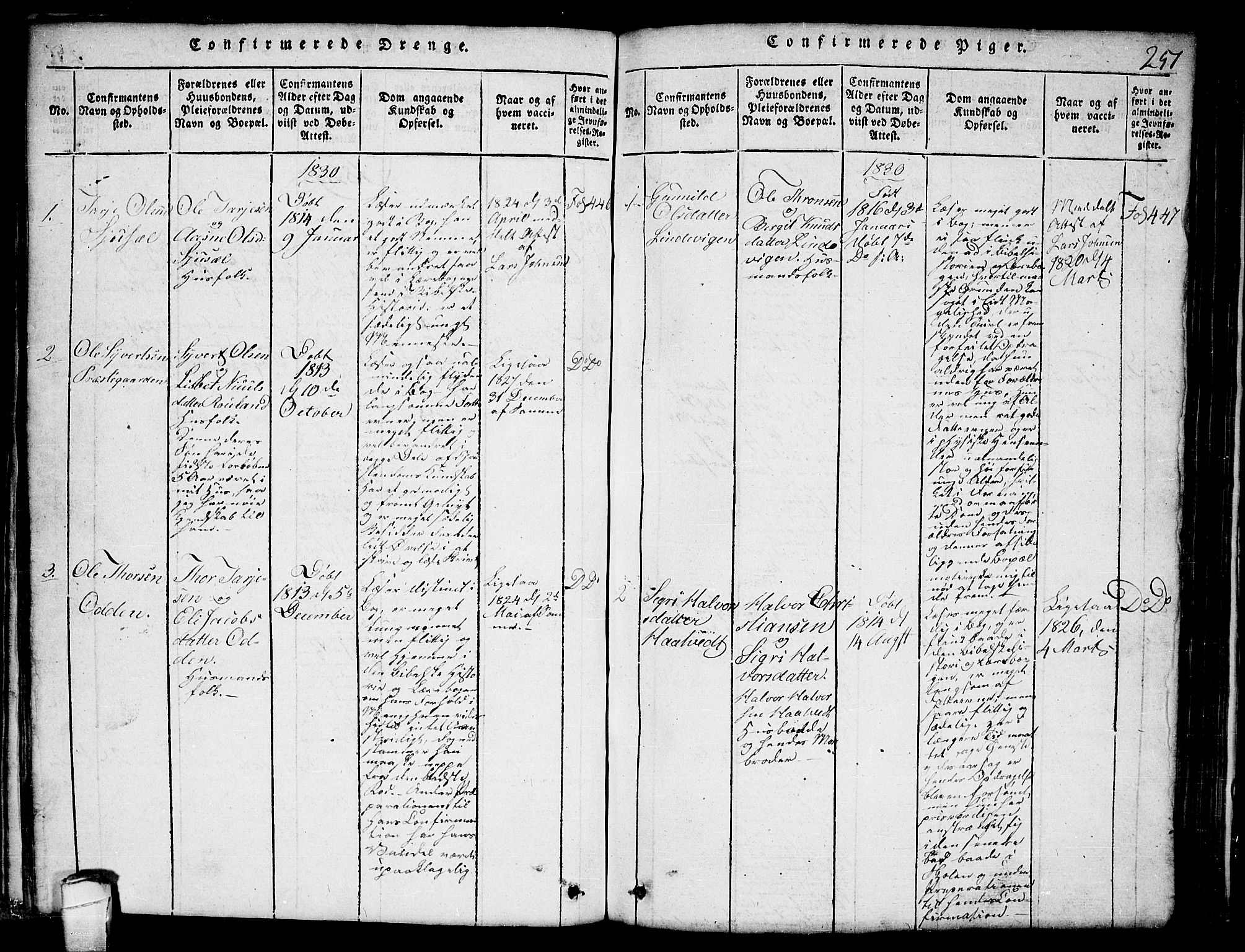 SAKO, Lårdal kirkebøker, G/Ga/L0001: Klokkerbok nr. I 1, 1815-1861, s. 251