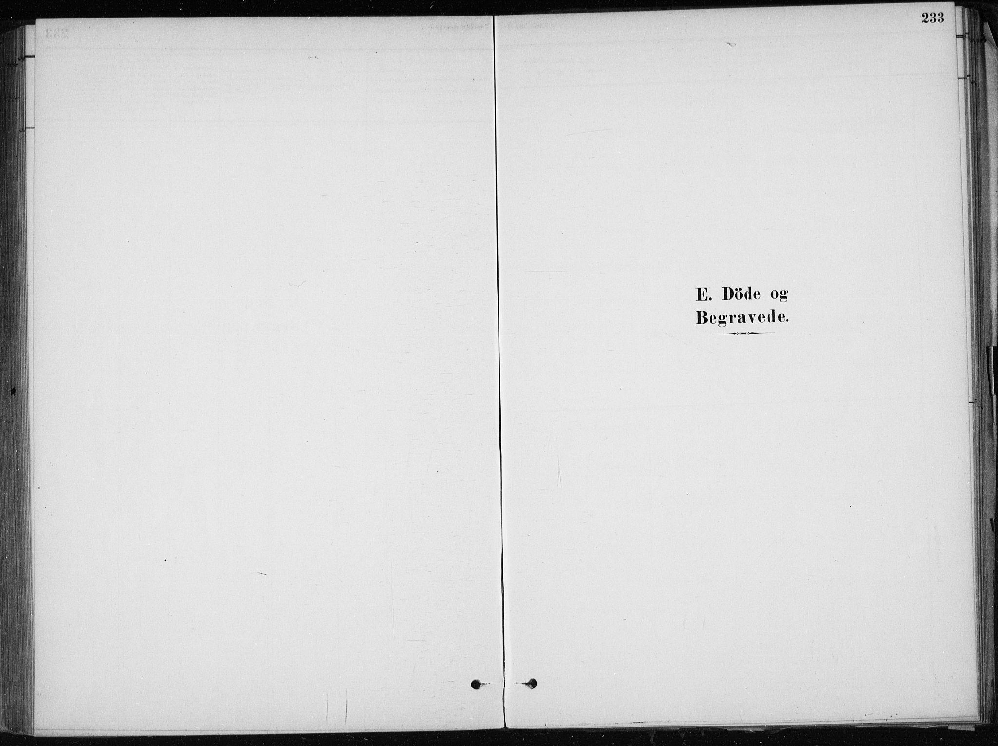 SAB, Skånevik Sokneprestembete, H/Haa: Ministerialbok nr. E  1, 1879-1901, s. 233