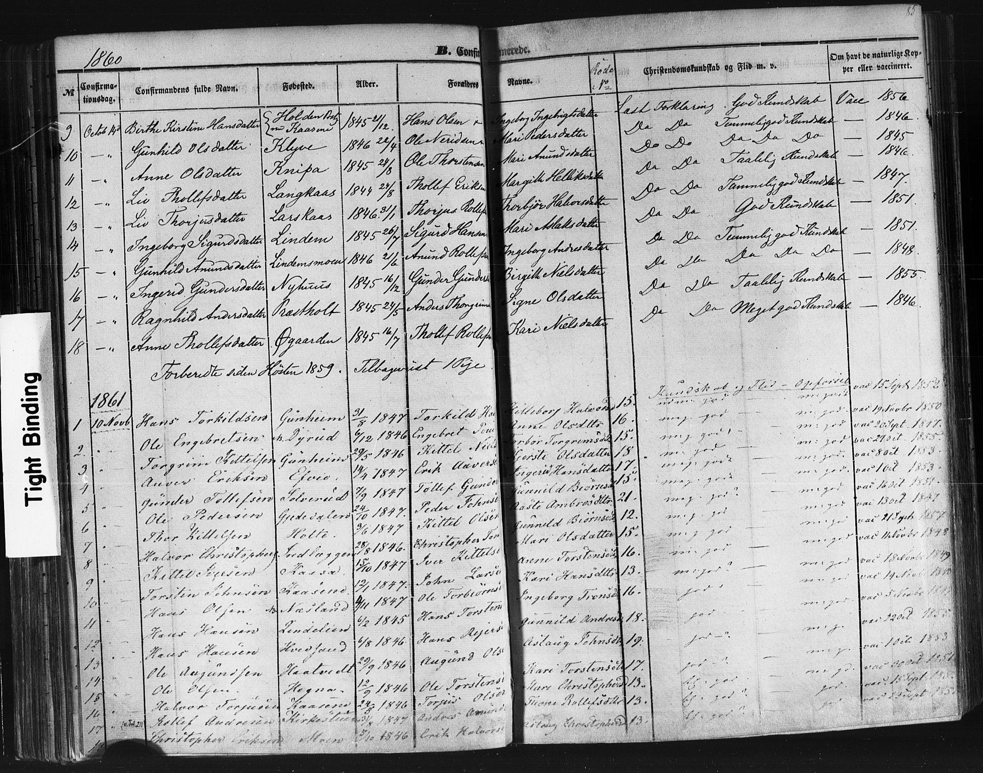 SAKO, Sauherad kirkebøker, F/Fb/L0001: Ministerialbok nr. II 1, 1851-1877, s. 85