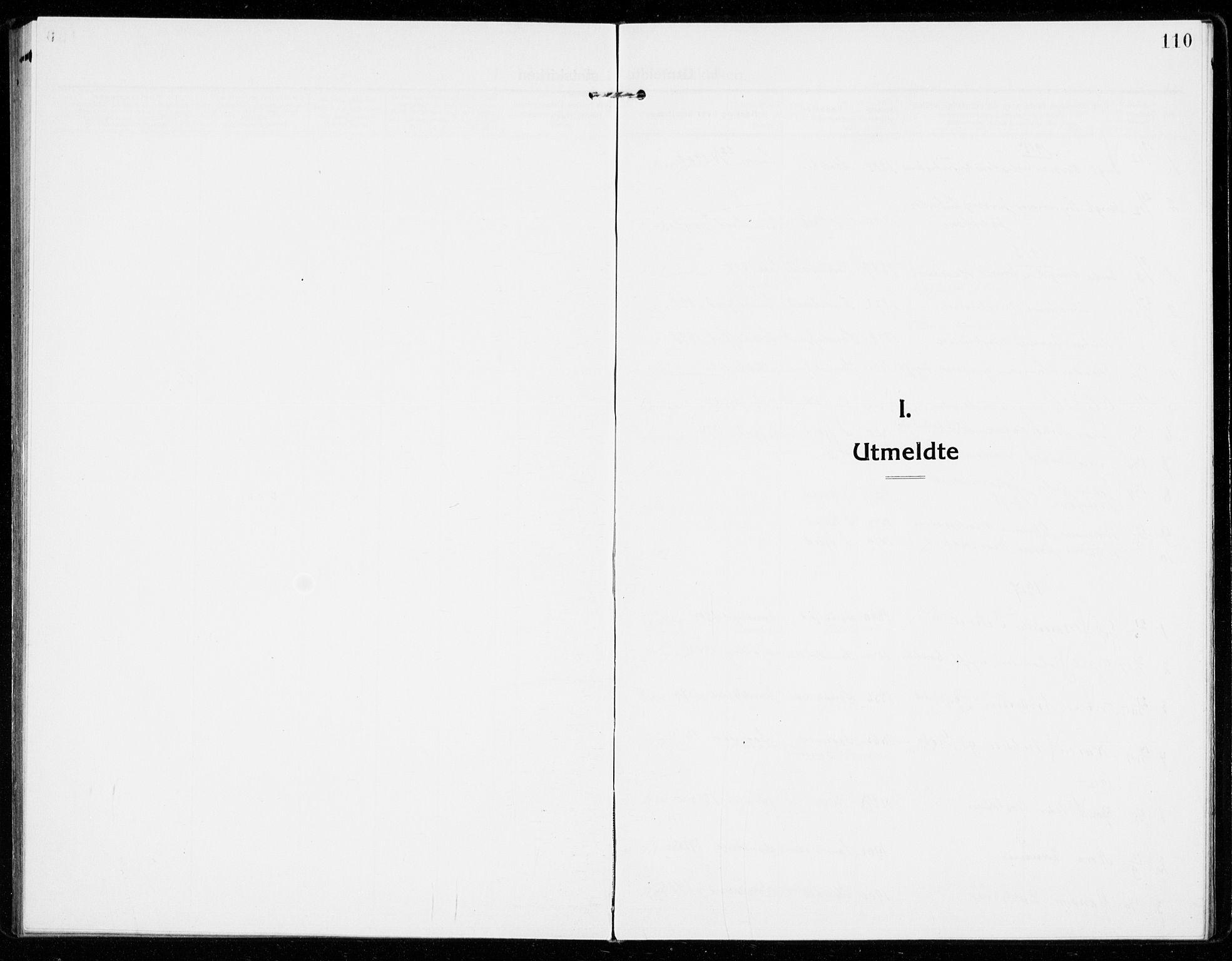 SAKO, Sandar kirkebøker, F/Fa/L0020: Ministerialbok nr. 20, 1915-1919, s. 110