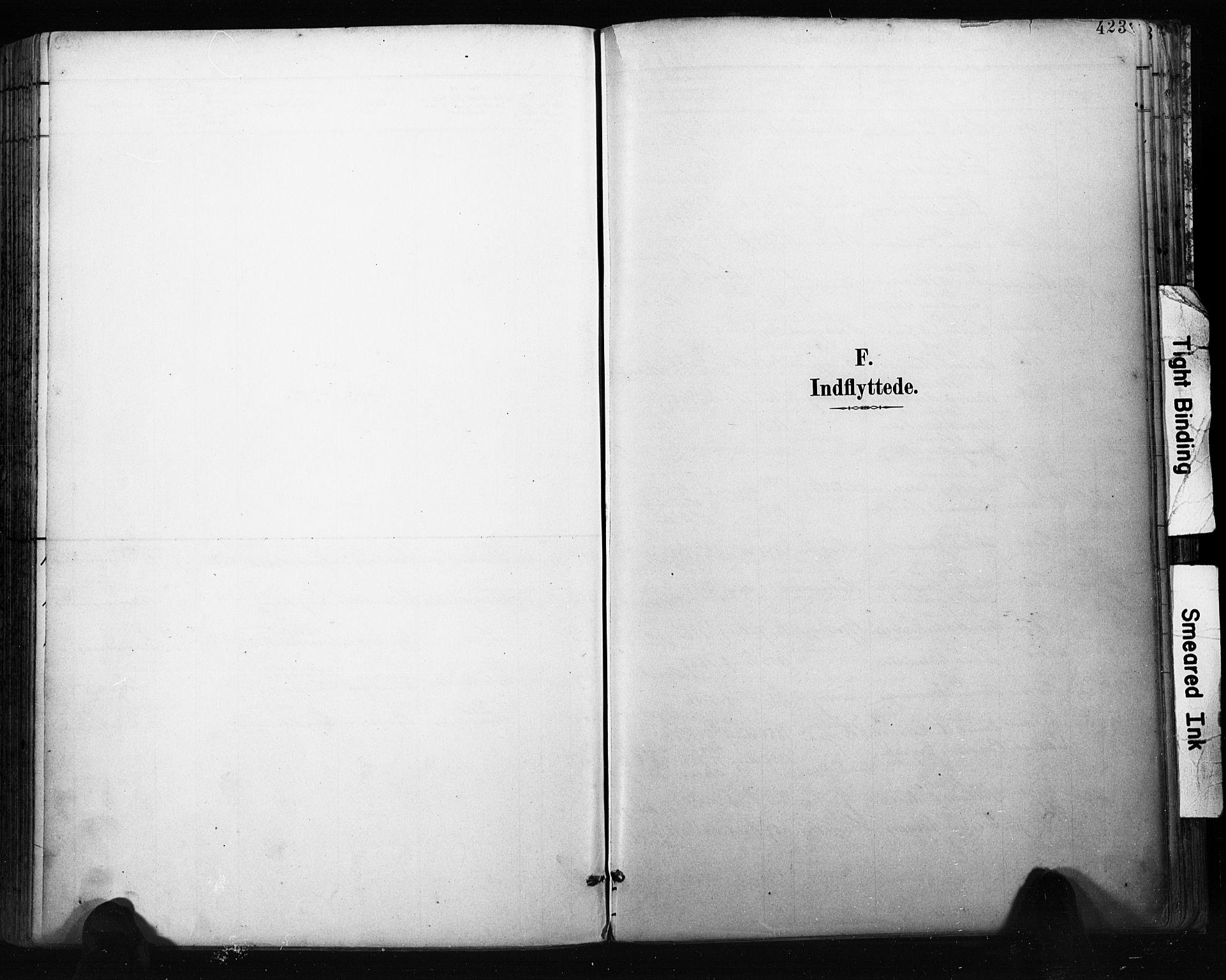 SAKO, Bragernes kirkebøker, F/Fb/L0007: Ministerialbok nr. II 7, 1885-1893, s. 423