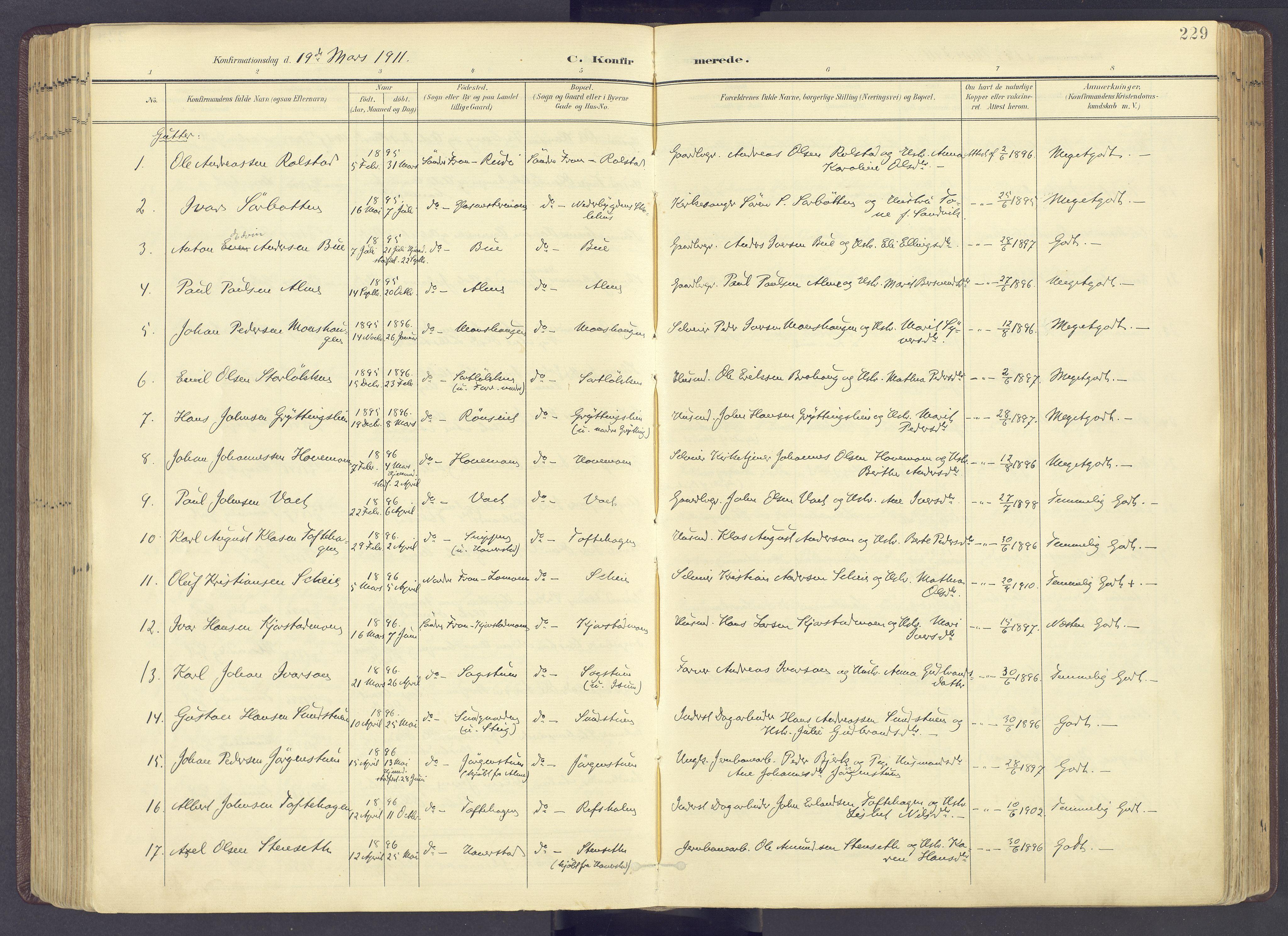 SAH, Sør-Fron prestekontor, H/Ha/Haa/L0004: Ministerialbok nr. 4, 1898-1919, s. 229