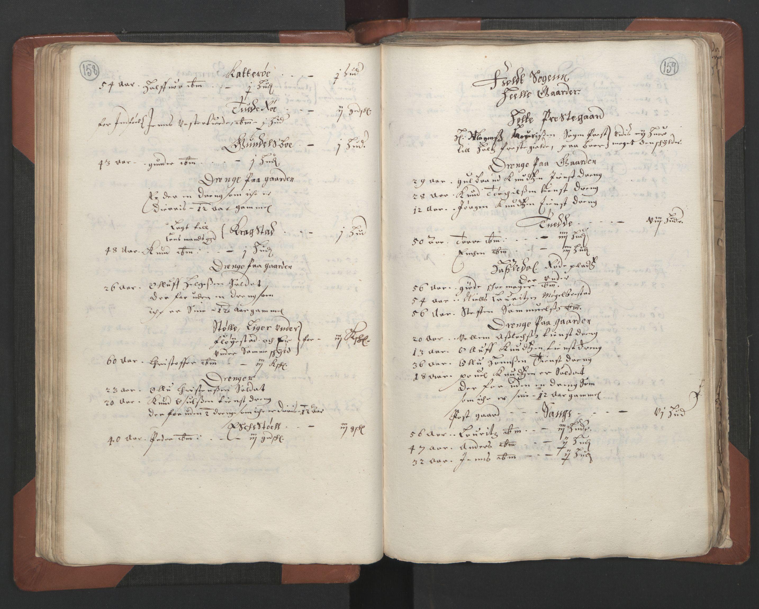 RA, Fogdenes og sorenskrivernes manntall 1664-1666, nr. 7: Nedenes fogderi, 1664-1666, s. 158-159