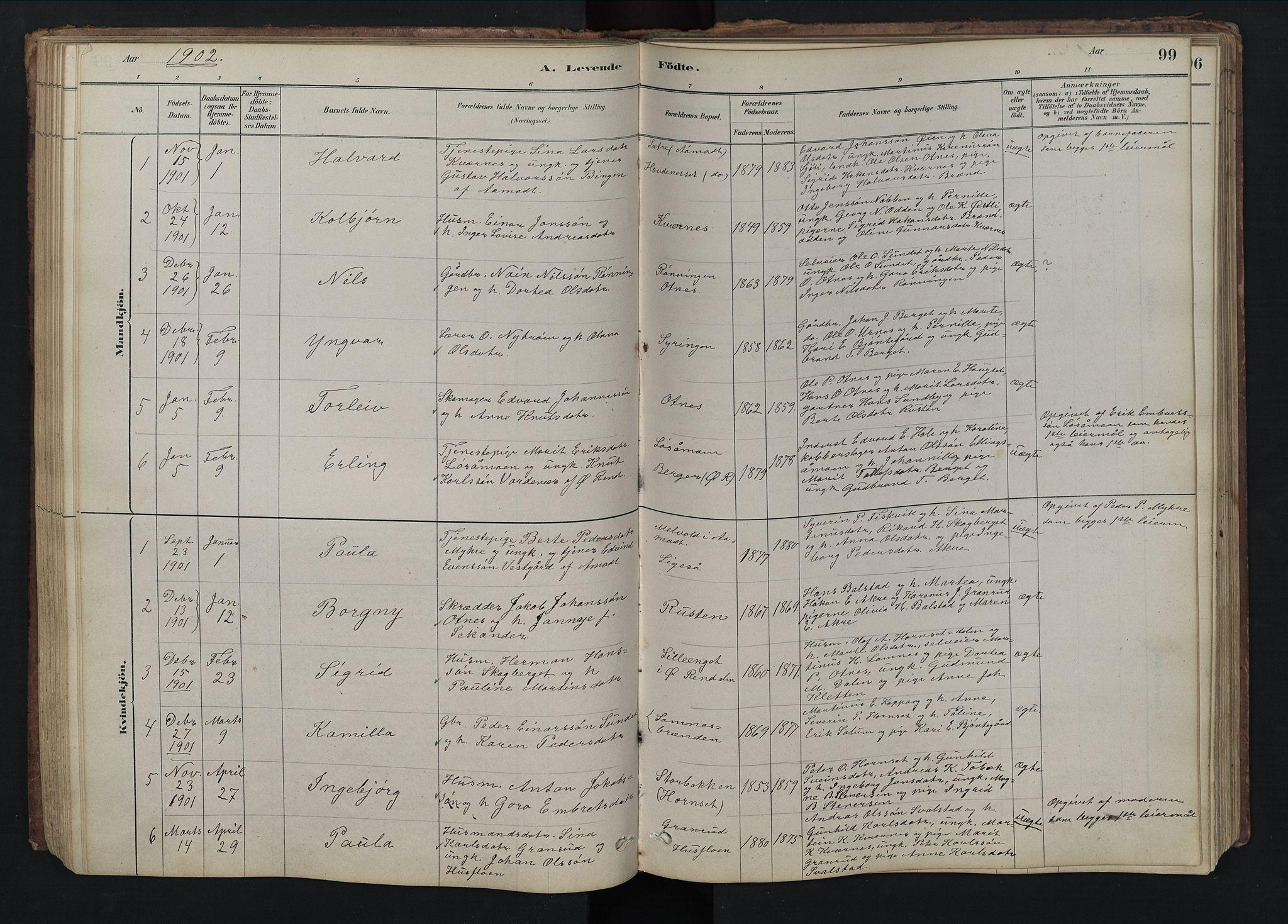 SAH, Rendalen prestekontor, H/Ha/Hab/L0009: Klokkerbok nr. 9, 1879-1902, s. 99