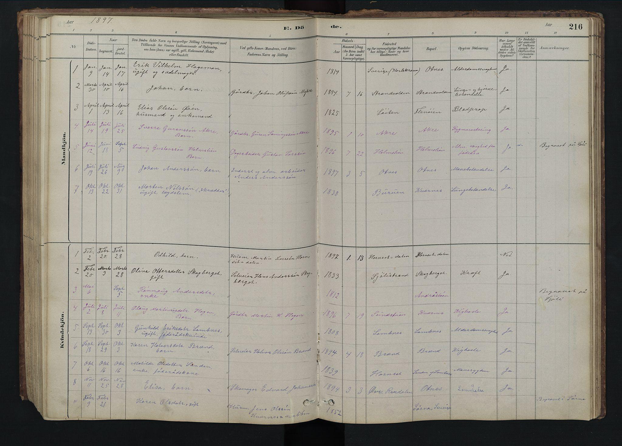 SAH, Rendalen prestekontor, H/Ha/Hab/L0009: Klokkerbok nr. 9, 1879-1902, s. 216