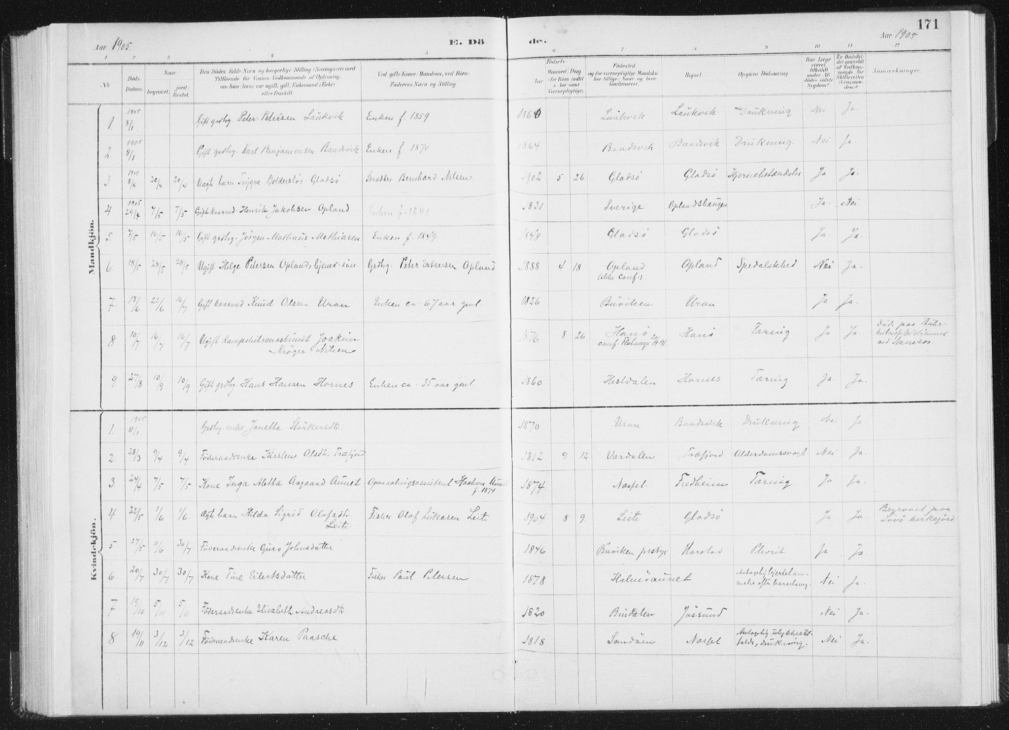 SAT, Ministerialprotokoller, klokkerbøker og fødselsregistre - Nord-Trøndelag, 771/L0597: Ministerialbok nr. 771A04, 1885-1910, s. 171
