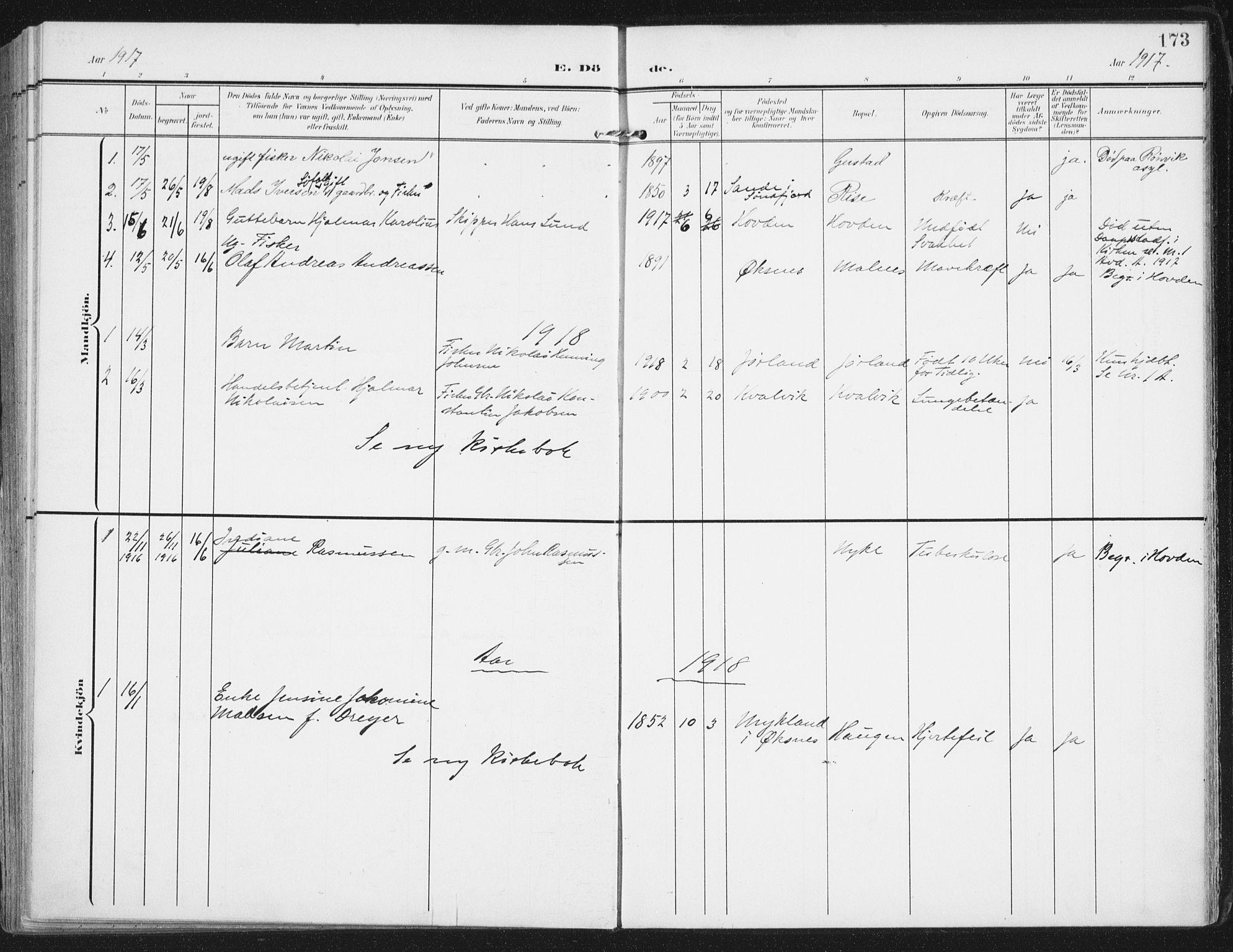 SAT, Ministerialprotokoller, klokkerbøker og fødselsregistre - Nordland, 892/L1321: Ministerialbok nr. 892A02, 1902-1918, s. 173