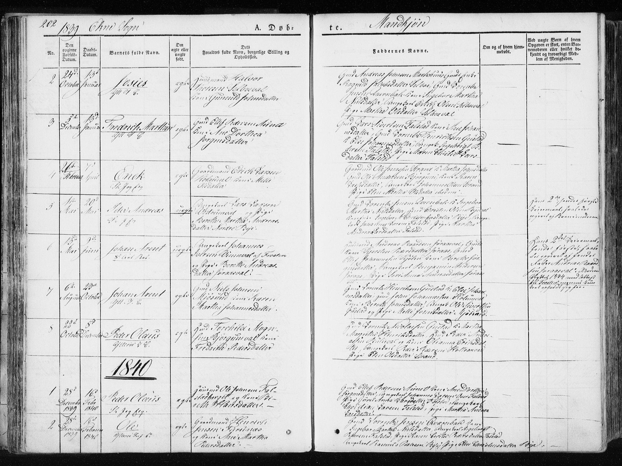 SAT, Ministerialprotokoller, klokkerbøker og fødselsregistre - Nord-Trøndelag, 717/L0154: Ministerialbok nr. 717A06 /2, 1836-1849, s. 202