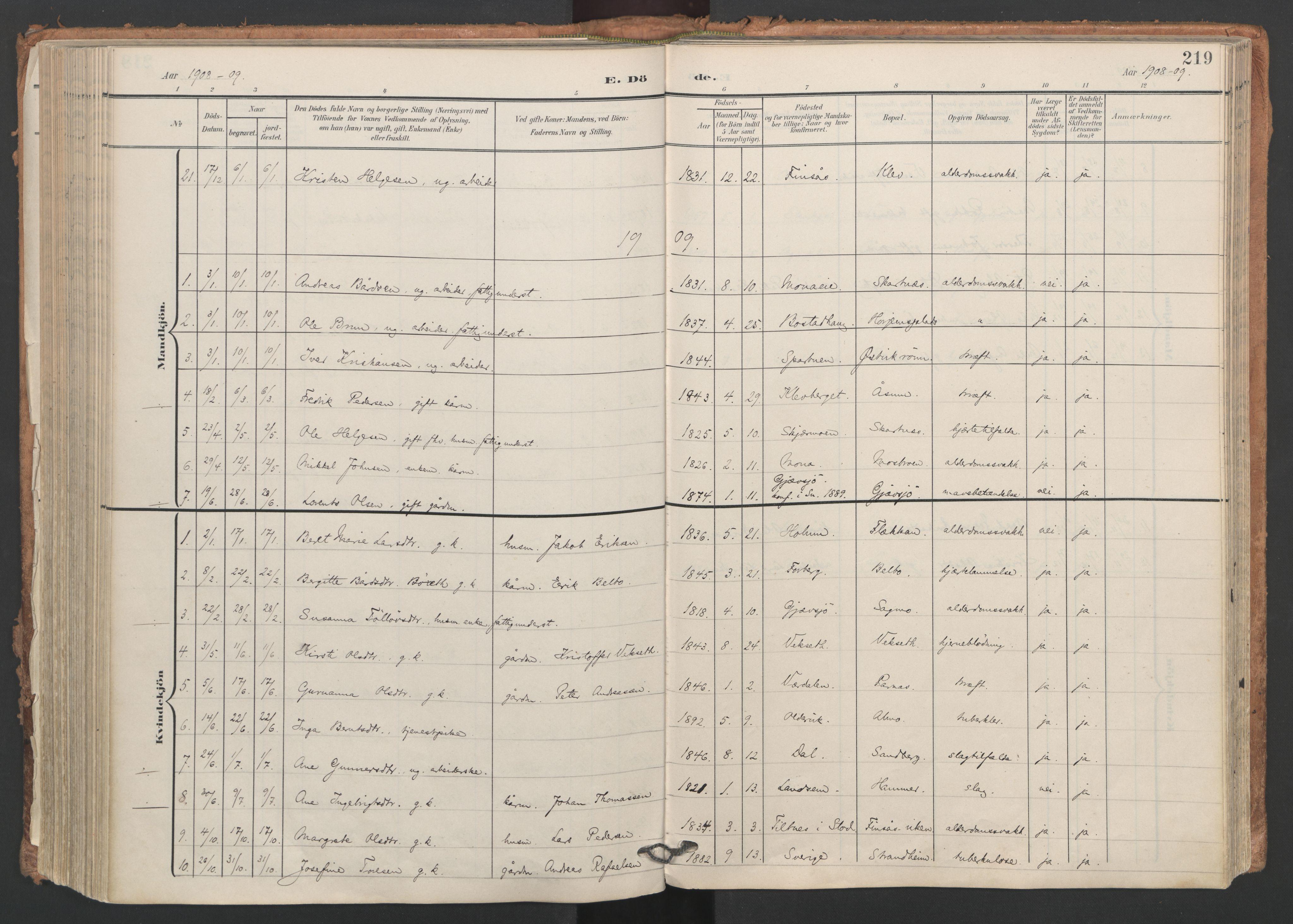 SAT, Ministerialprotokoller, klokkerbøker og fødselsregistre - Nord-Trøndelag, 749/L0477: Ministerialbok nr. 749A11, 1902-1927, s. 219