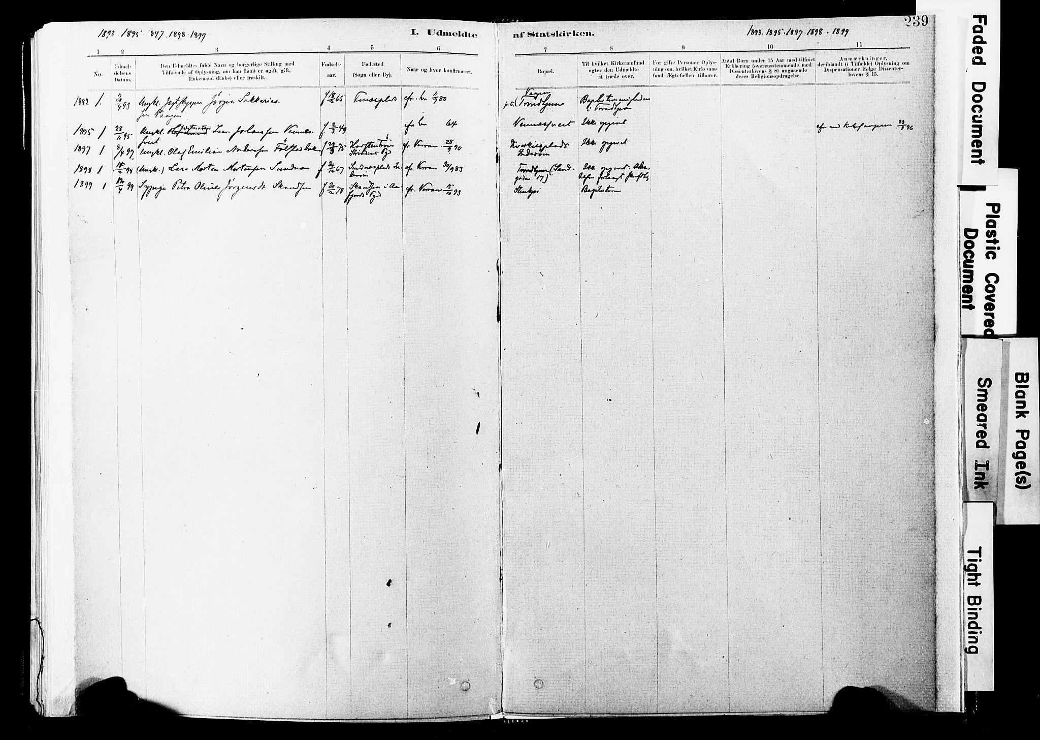 SAT, Ministerialprotokoller, klokkerbøker og fødselsregistre - Nord-Trøndelag, 744/L0420: Ministerialbok nr. 744A04, 1882-1904, s. 239