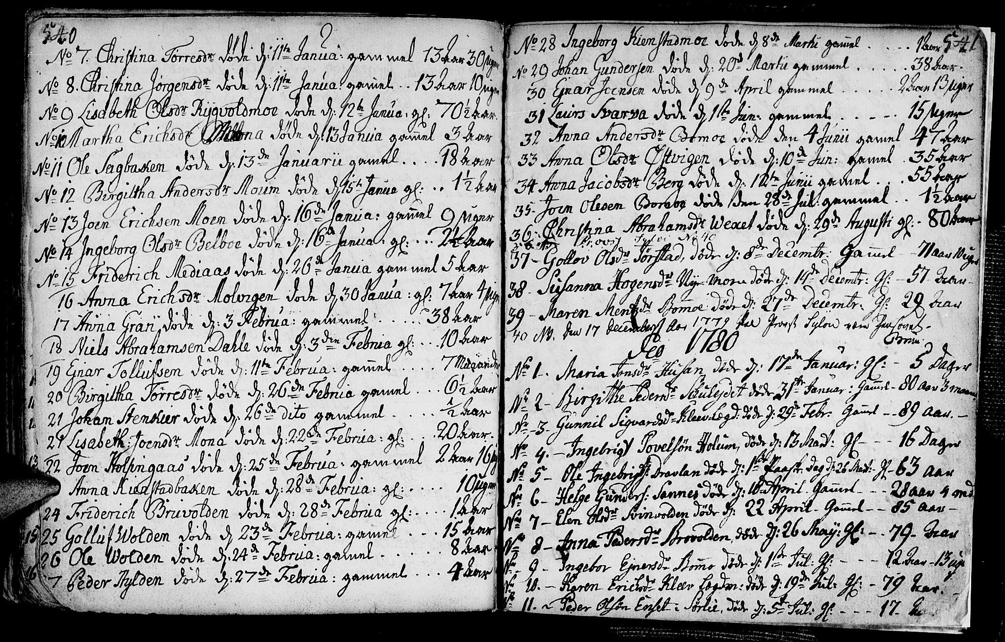 SAT, Ministerialprotokoller, klokkerbøker og fødselsregistre - Nord-Trøndelag, 749/L0467: Ministerialbok nr. 749A01, 1733-1787, s. 540-541