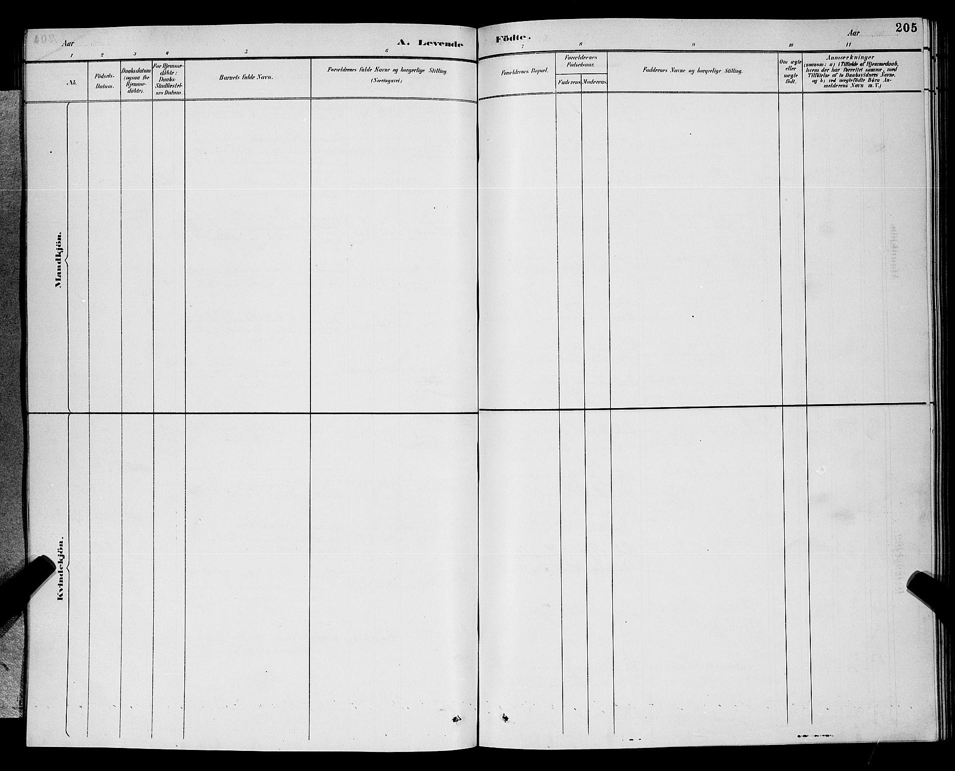 SAKO, Gjerpen kirkebøker, G/Ga/L0002: Klokkerbok nr. I 2, 1883-1900, s. 205