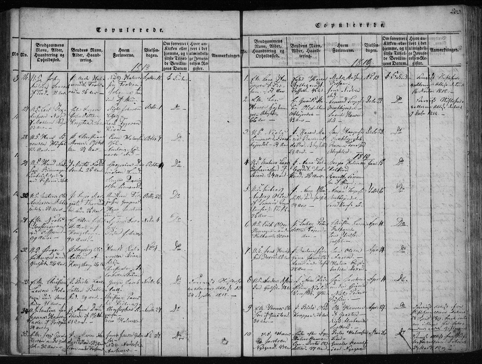 SAKO, Gjerpen kirkebøker, F/Fa/L0004: Ministerialbok nr. 4, 1814-1823, s. 203