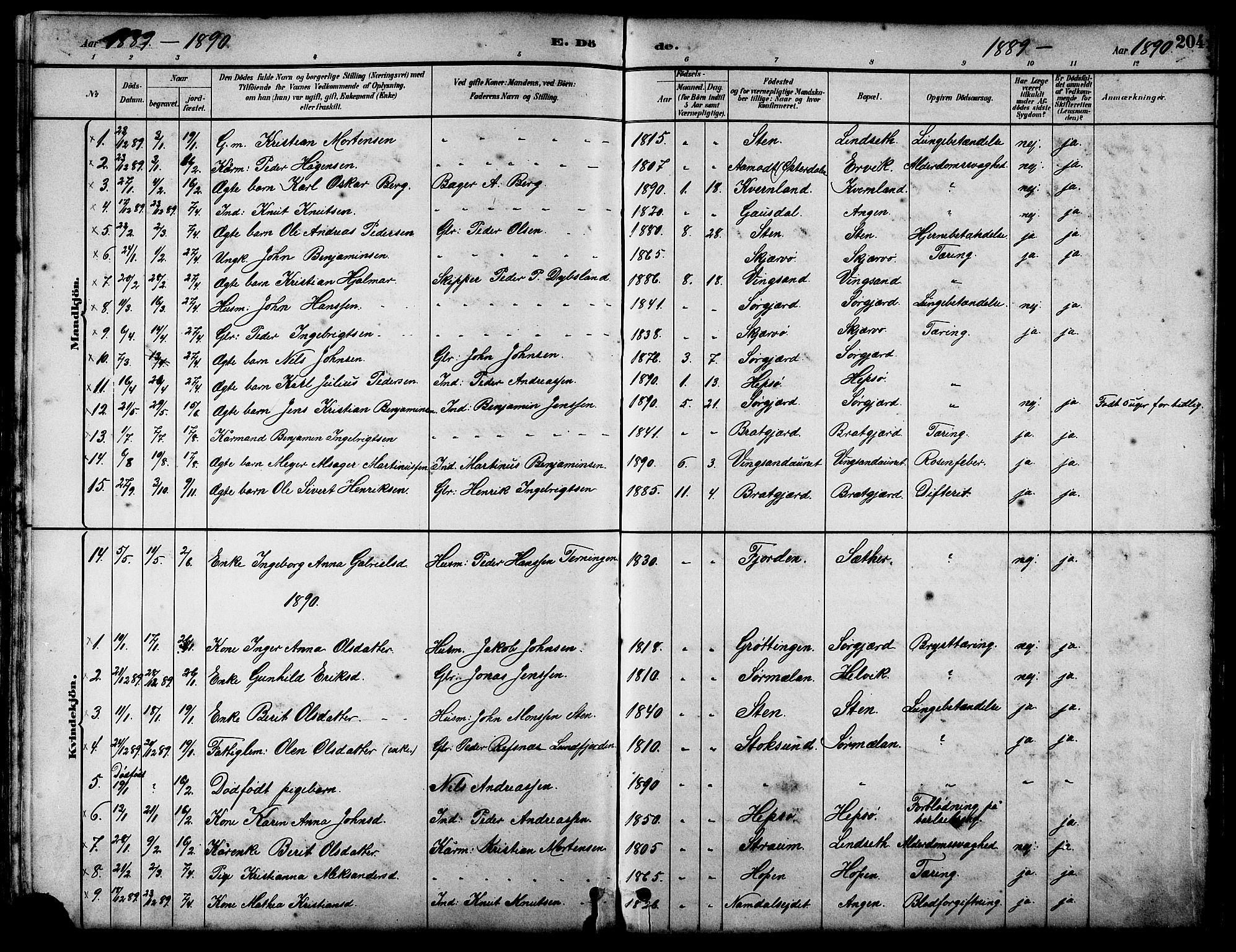 SAT, Ministerialprotokoller, klokkerbøker og fødselsregistre - Sør-Trøndelag, 658/L0726: Klokkerbok nr. 658C02, 1883-1908, s. 204