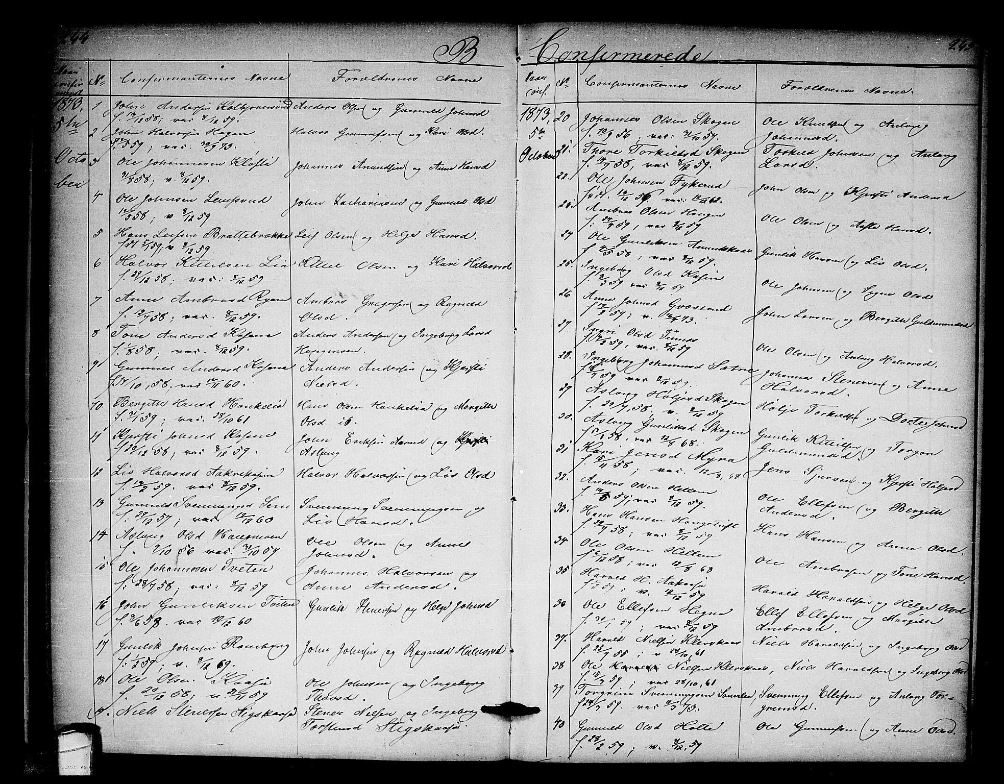SAKO, Heddal kirkebøker, G/Ga/L0001: Klokkerbok nr. I 1, 1866-1878, s. 244-245