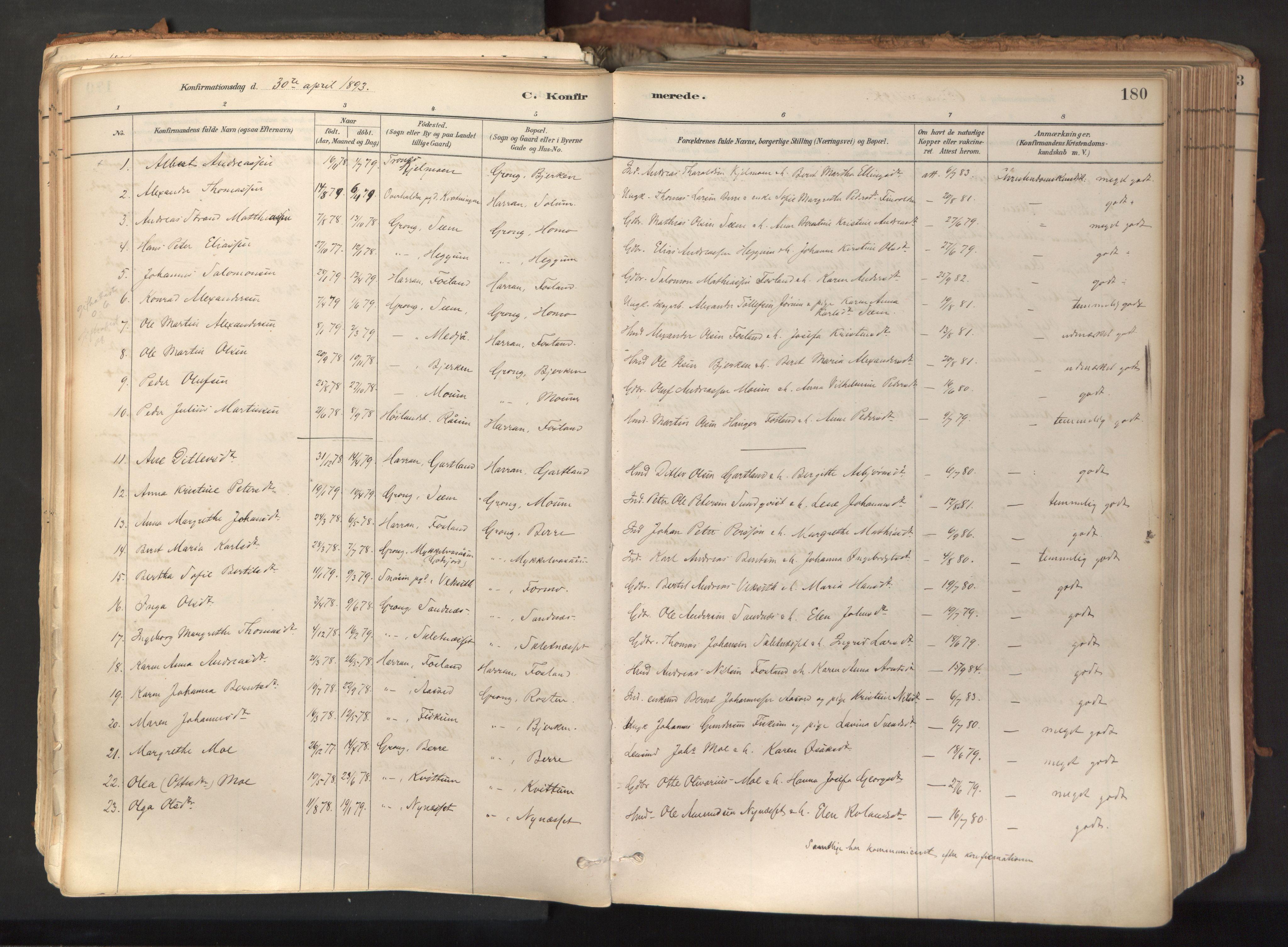 SAT, Ministerialprotokoller, klokkerbøker og fødselsregistre - Nord-Trøndelag, 758/L0519: Ministerialbok nr. 758A04, 1880-1926, s. 180