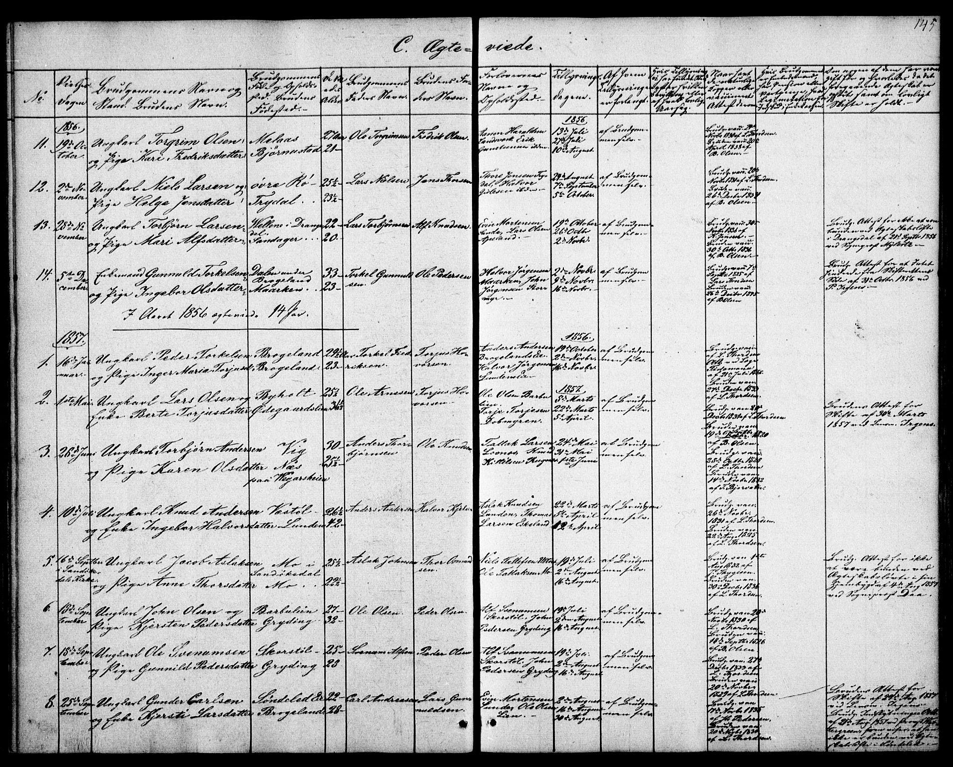 SAK, Gjerstad sokneprestkontor, F/Fa/Faa/L0006: Ministerialbok nr. A 6, 1841-1857, s. 145