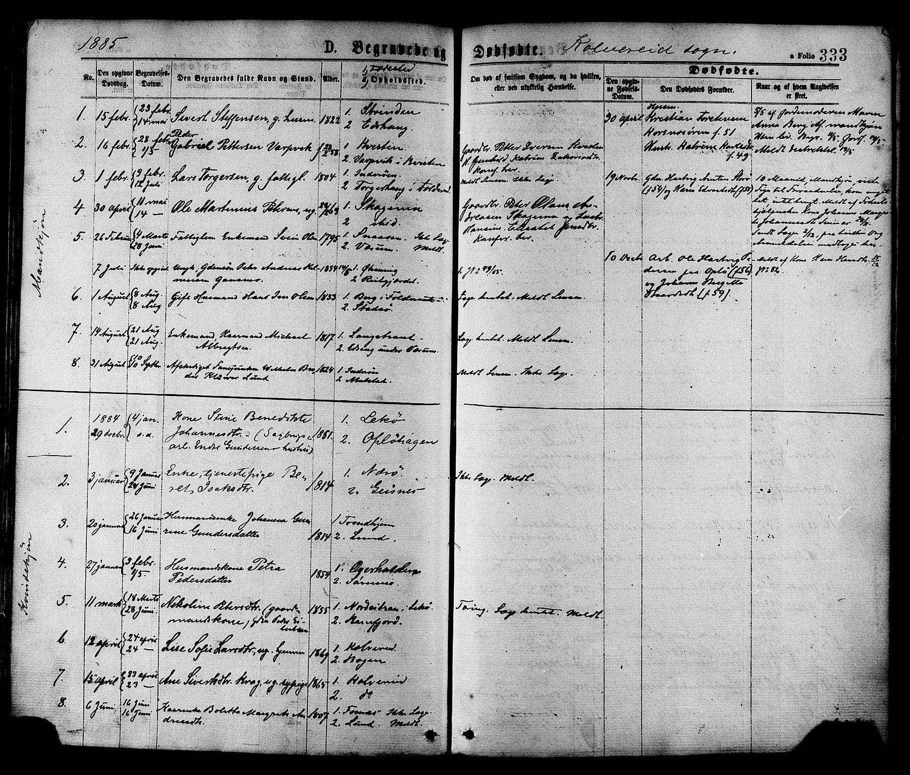SAT, Ministerialprotokoller, klokkerbøker og fødselsregistre - Nord-Trøndelag, 780/L0642: Ministerialbok nr. 780A07 /1, 1874-1885, s. 333