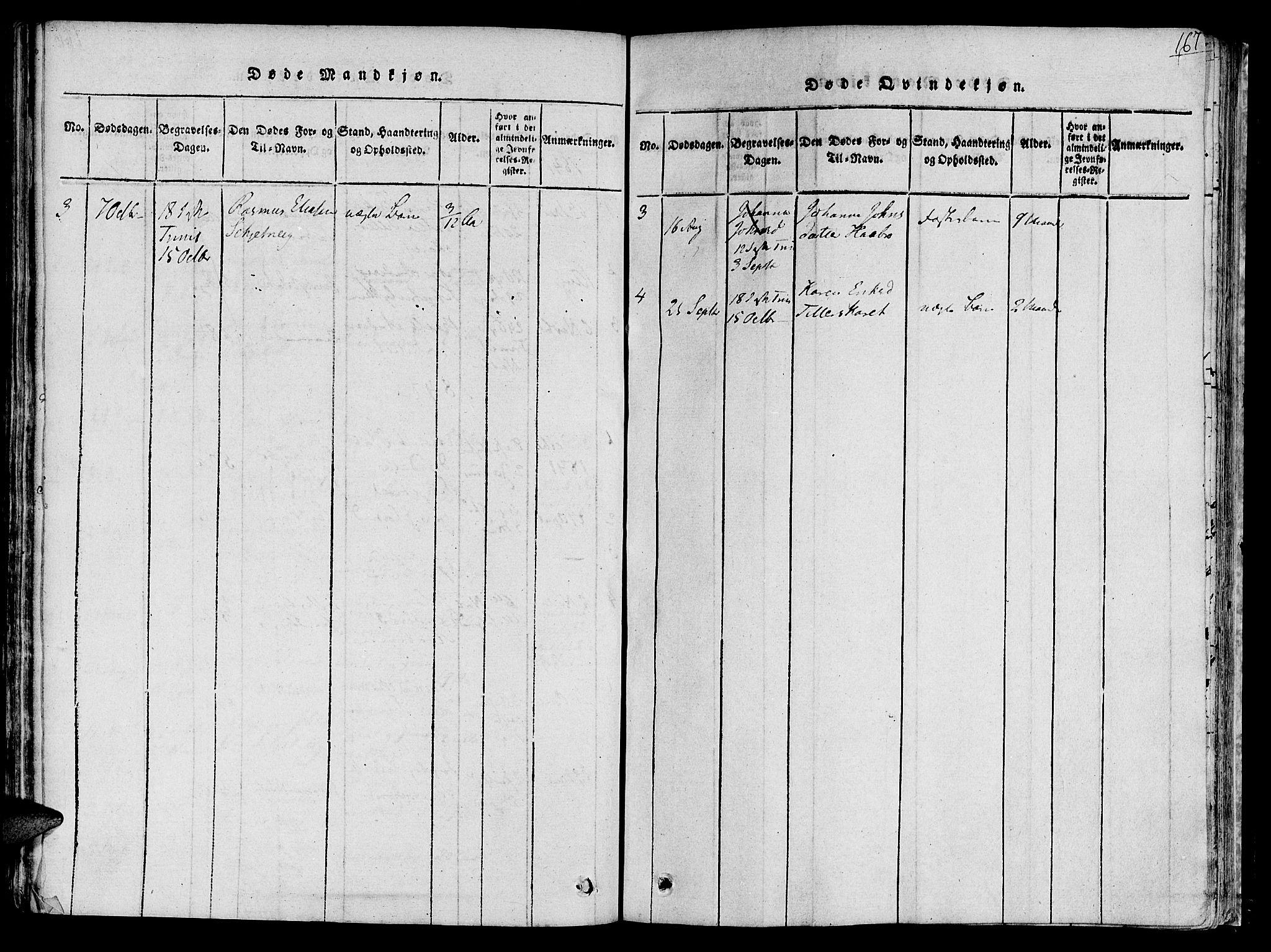 SAT, Ministerialprotokoller, klokkerbøker og fødselsregistre - Sør-Trøndelag, 618/L0440: Ministerialbok nr. 618A04 /2, 1816-1843, s. 167