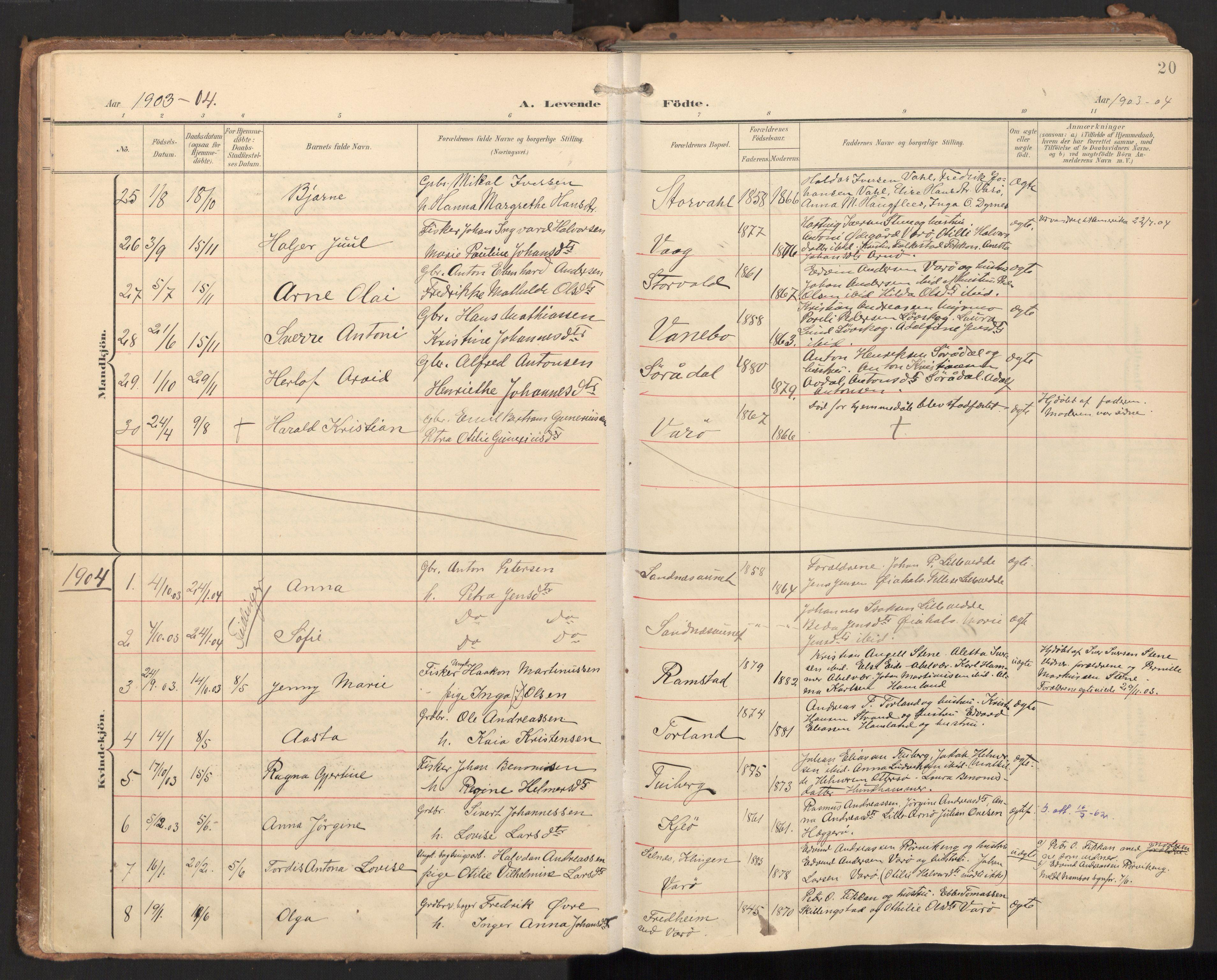 SAT, Ministerialprotokoller, klokkerbøker og fødselsregistre - Nord-Trøndelag, 784/L0677: Ministerialbok nr. 784A12, 1900-1920, s. 20