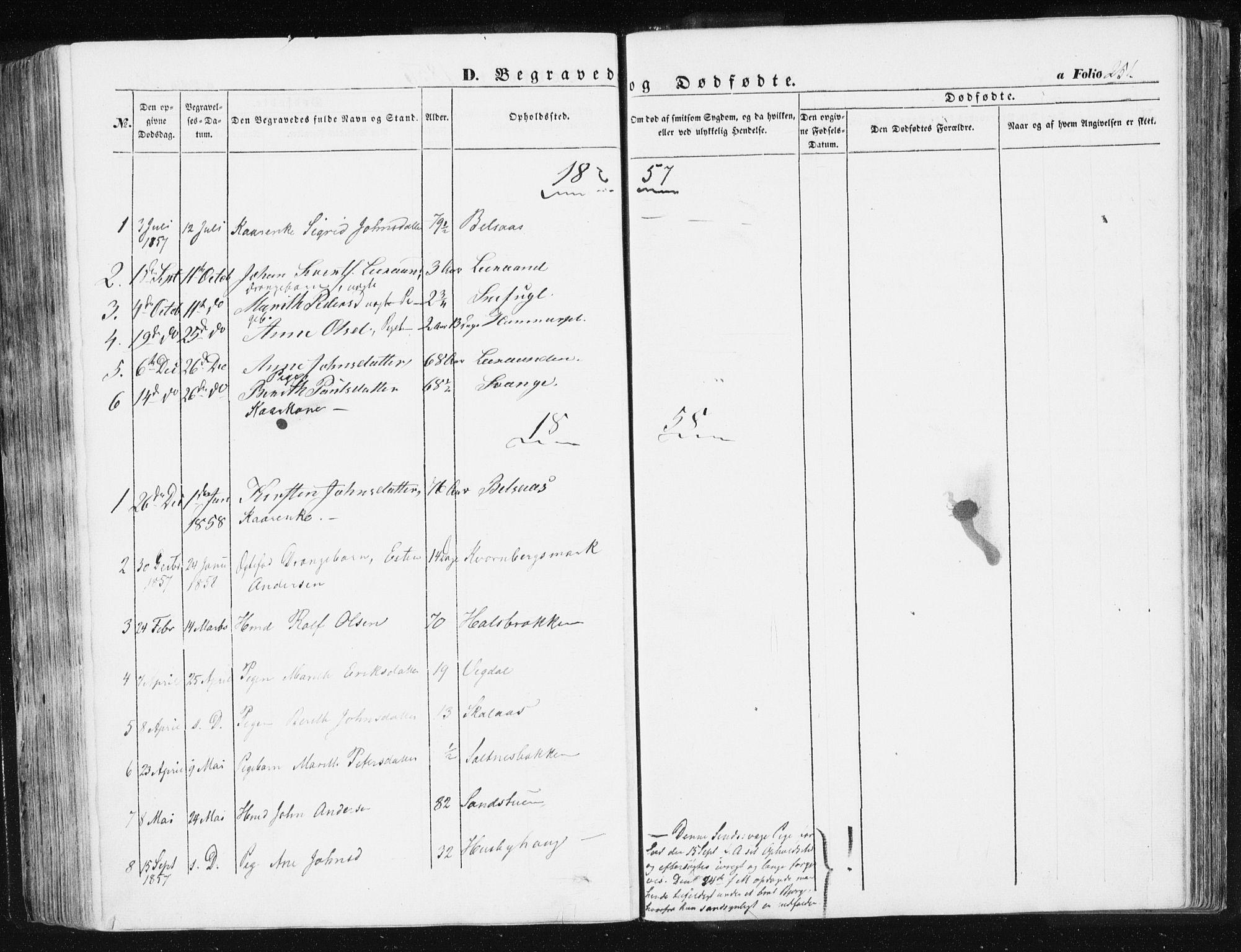 SAT, Ministerialprotokoller, klokkerbøker og fødselsregistre - Sør-Trøndelag, 612/L0376: Ministerialbok nr. 612A08, 1846-1859, s. 251
