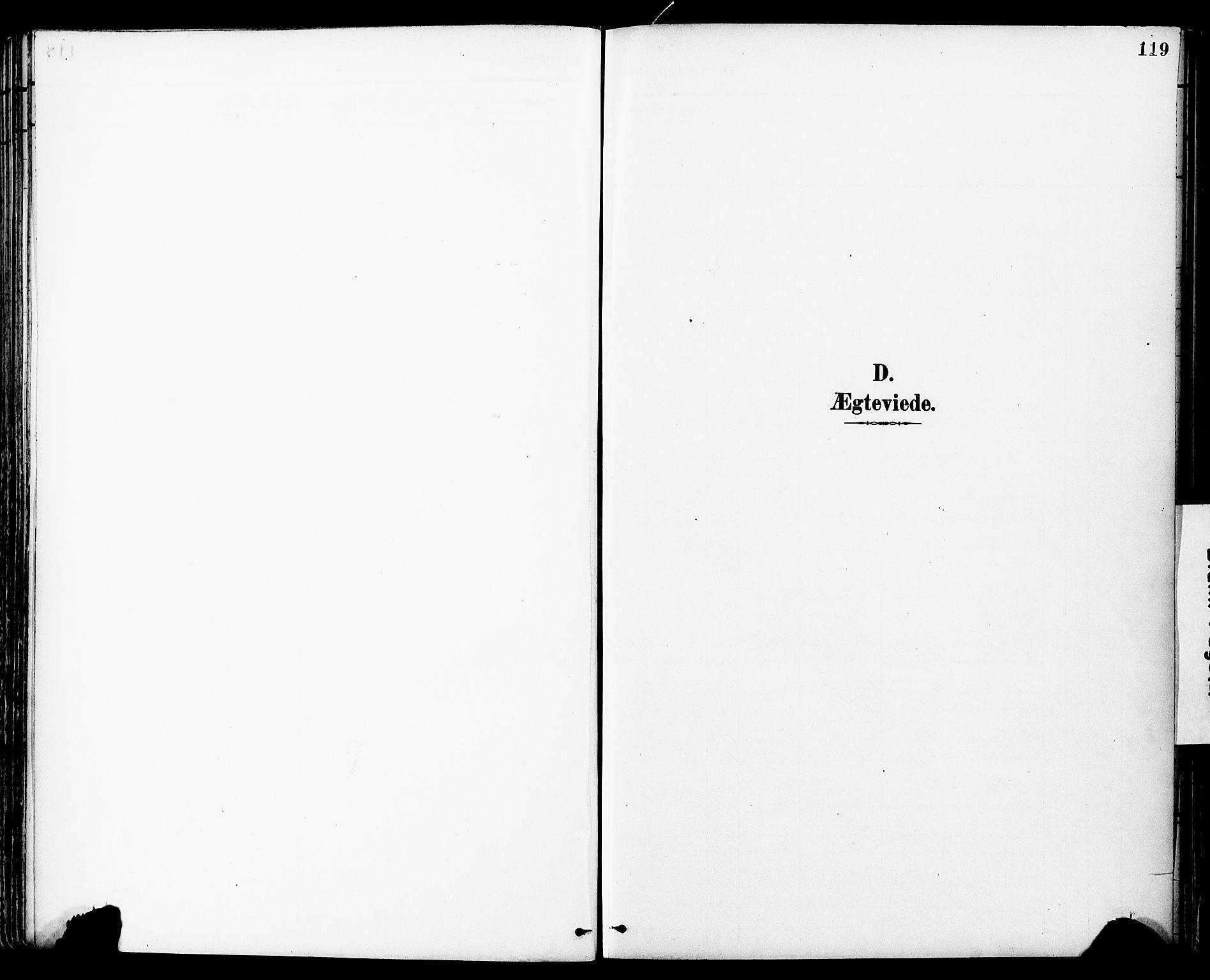 SAT, Ministerialprotokoller, klokkerbøker og fødselsregistre - Sør-Trøndelag, 681/L0935: Ministerialbok nr. 681A13, 1890-1898, s. 119