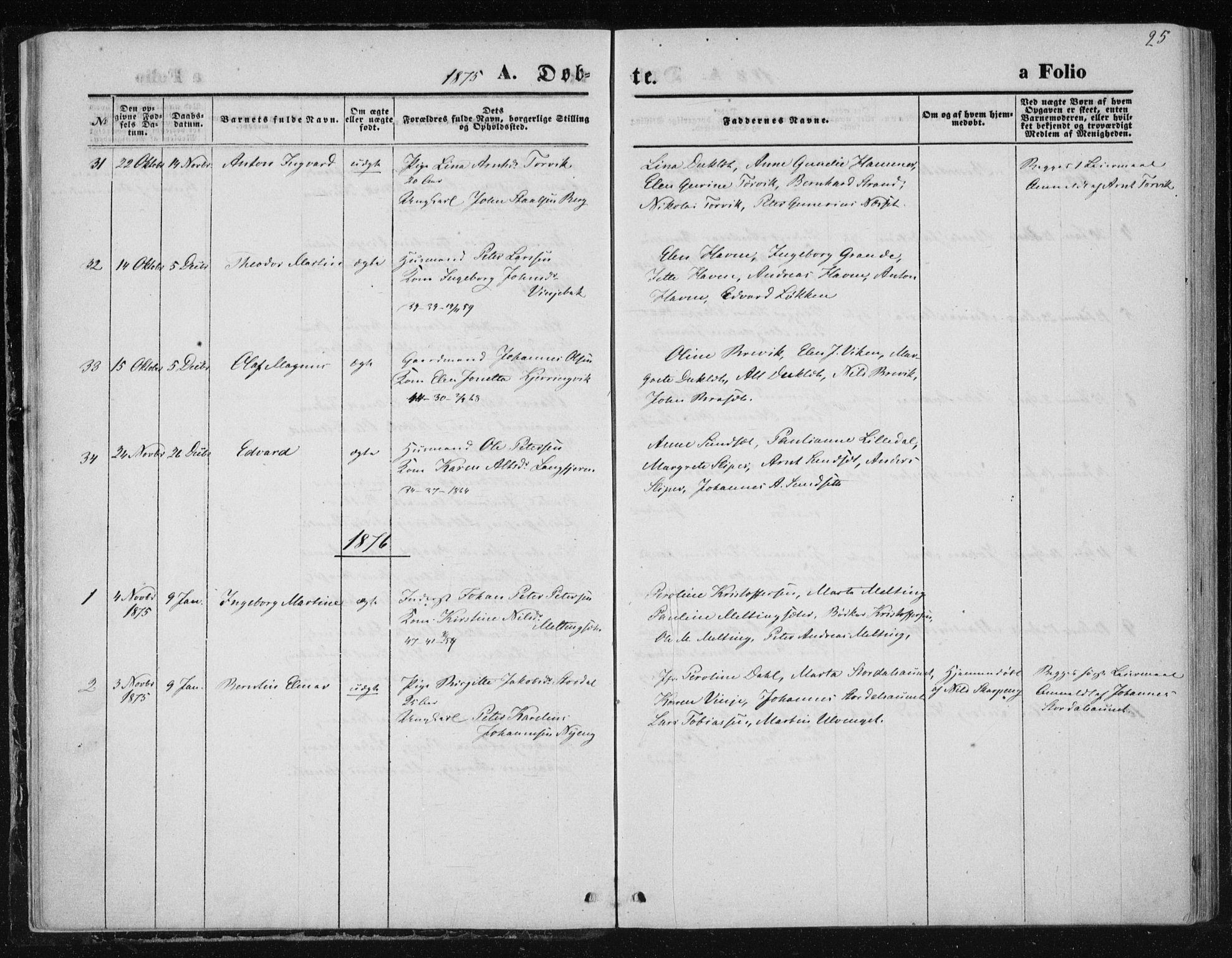 SAT, Ministerialprotokoller, klokkerbøker og fødselsregistre - Nord-Trøndelag, 733/L0324: Ministerialbok nr. 733A03, 1870-1883, s. 25