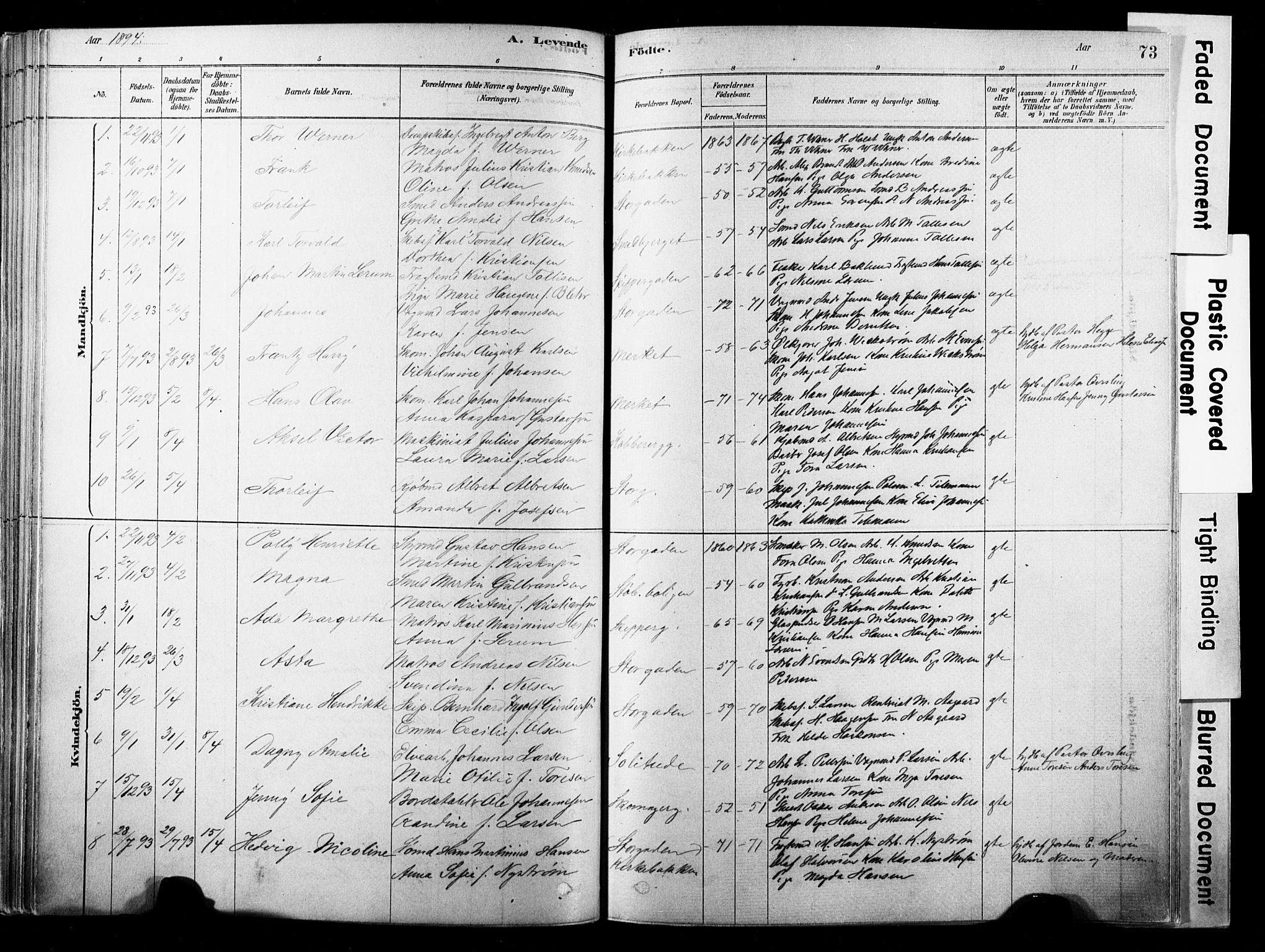 SAKO, Strømsø kirkebøker, F/Fb/L0006: Ministerialbok nr. II 6, 1879-1910, s. 73