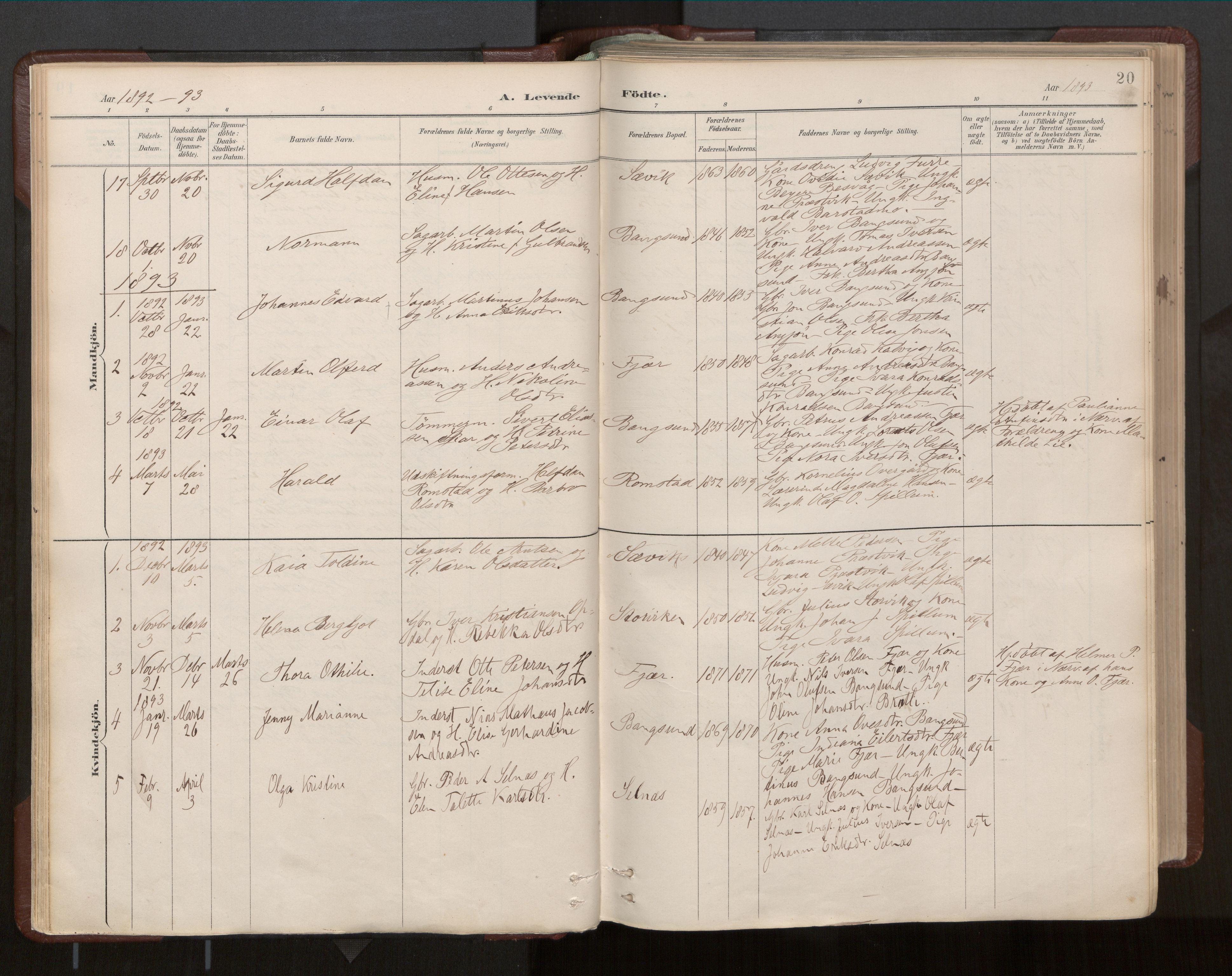 SAT, Ministerialprotokoller, klokkerbøker og fødselsregistre - Nord-Trøndelag, 770/L0589: Ministerialbok nr. 770A03, 1887-1929, s. 20
