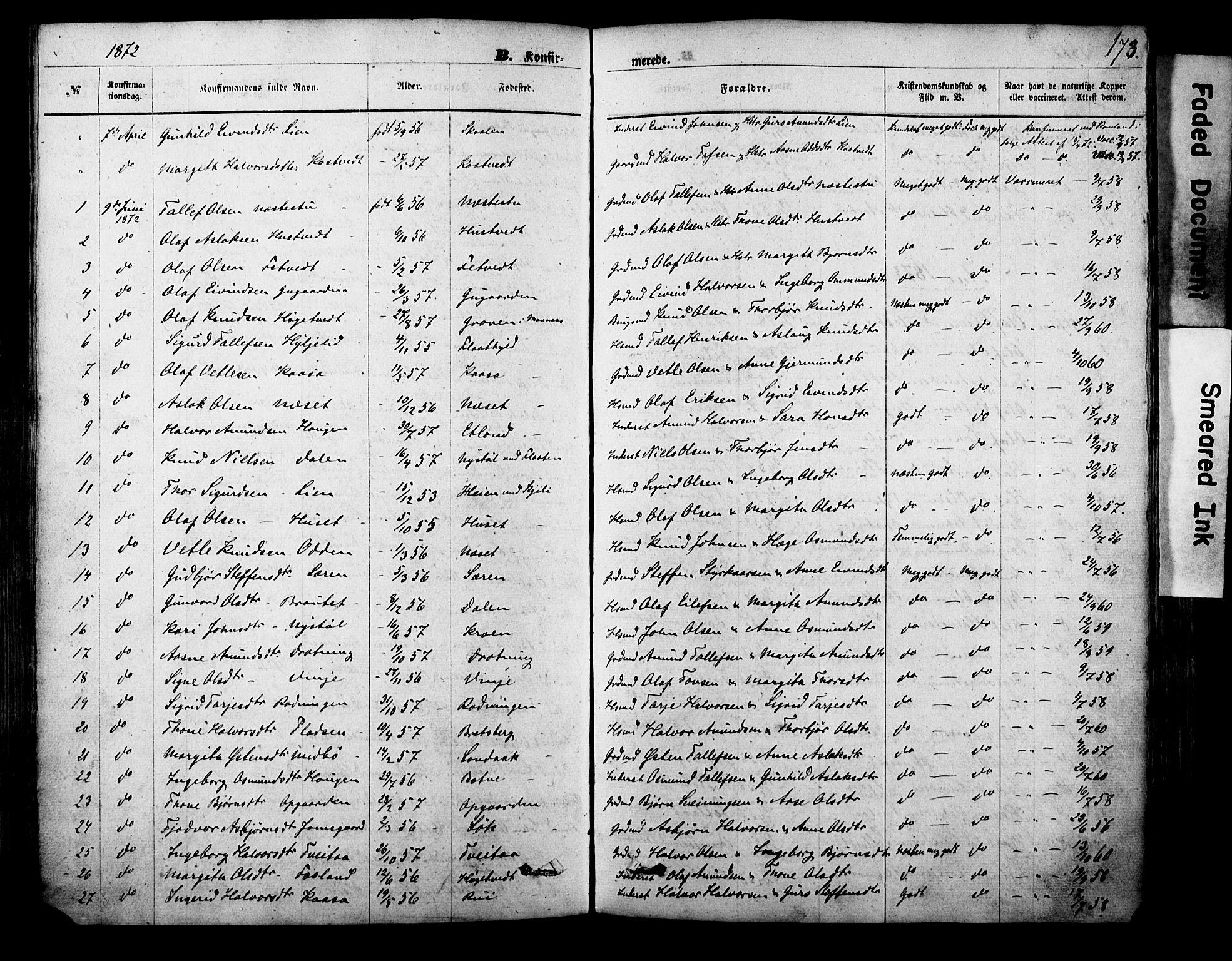 SAKO, Vinje kirkebøker, F/Fa/L0005: Ministerialbok nr. I 5, 1870-1886, s. 173