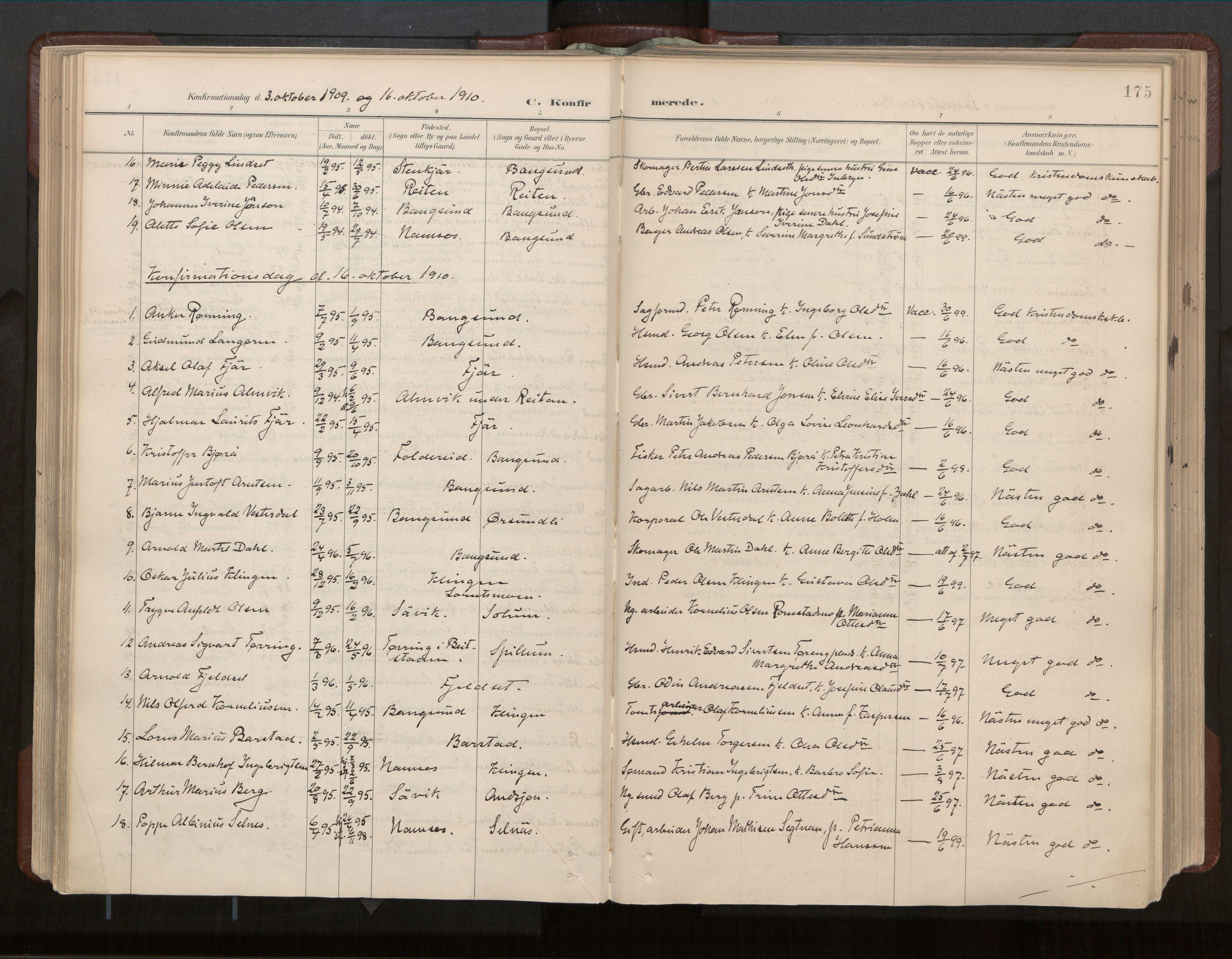SAT, Ministerialprotokoller, klokkerbøker og fødselsregistre - Nord-Trøndelag, 770/L0589: Ministerialbok nr. 770A03, 1887-1929, s. 175
