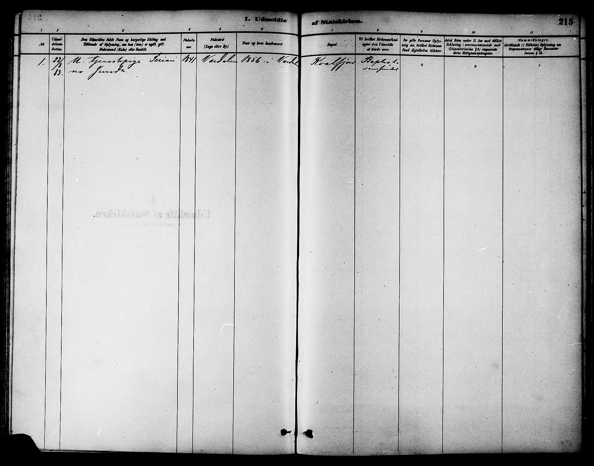 SAT, Ministerialprotokoller, klokkerbøker og fødselsregistre - Nord-Trøndelag, 784/L0672: Ministerialbok nr. 784A07, 1880-1887, s. 215