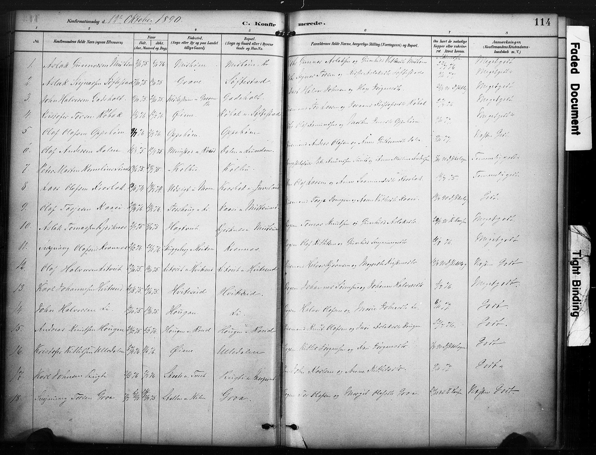 SAKO, Kviteseid kirkebøker, F/Fa/L0008: Ministerialbok nr. I 8, 1882-1903, s. 114