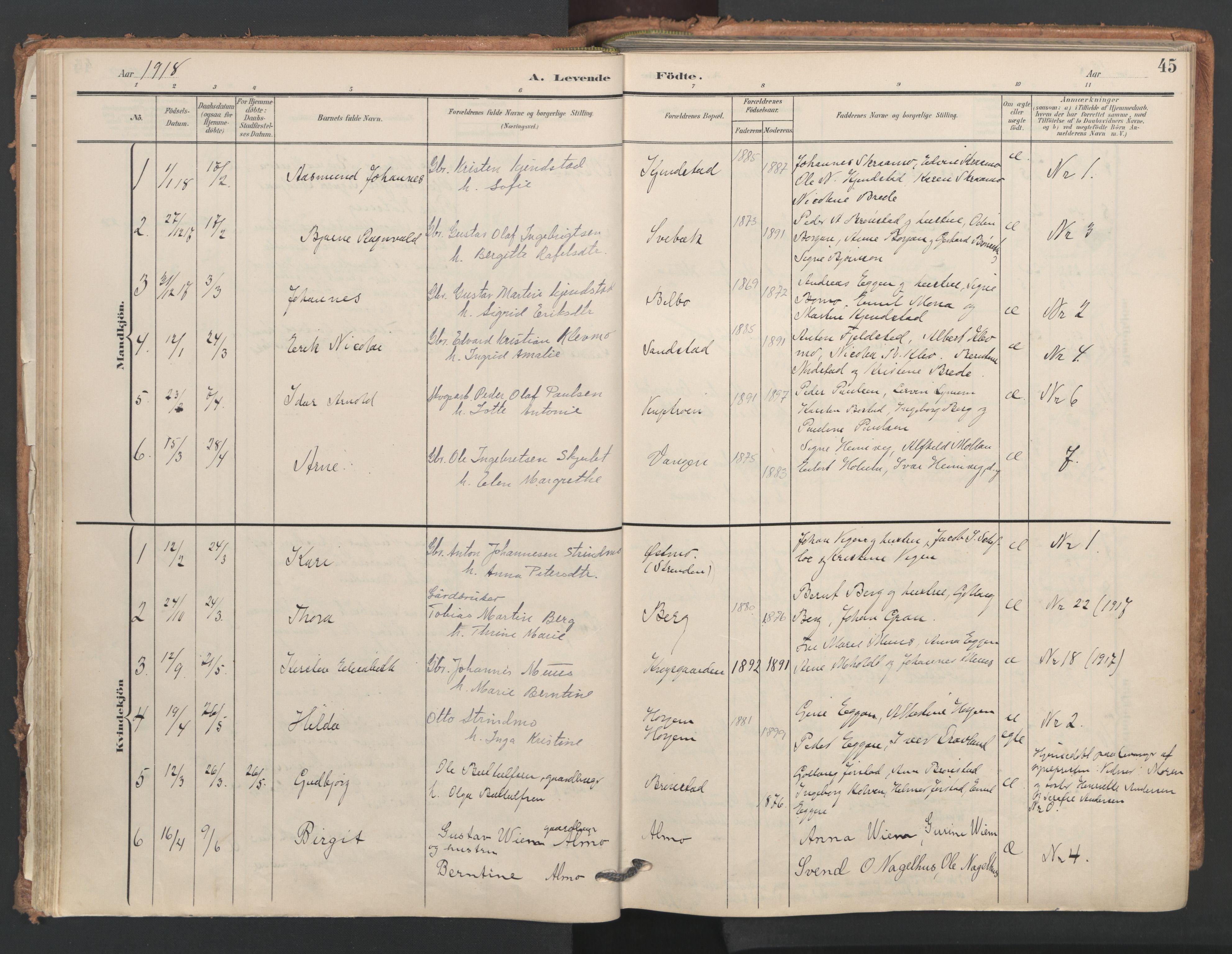 SAT, Ministerialprotokoller, klokkerbøker og fødselsregistre - Nord-Trøndelag, 749/L0477: Ministerialbok nr. 749A11, 1902-1927, s. 45