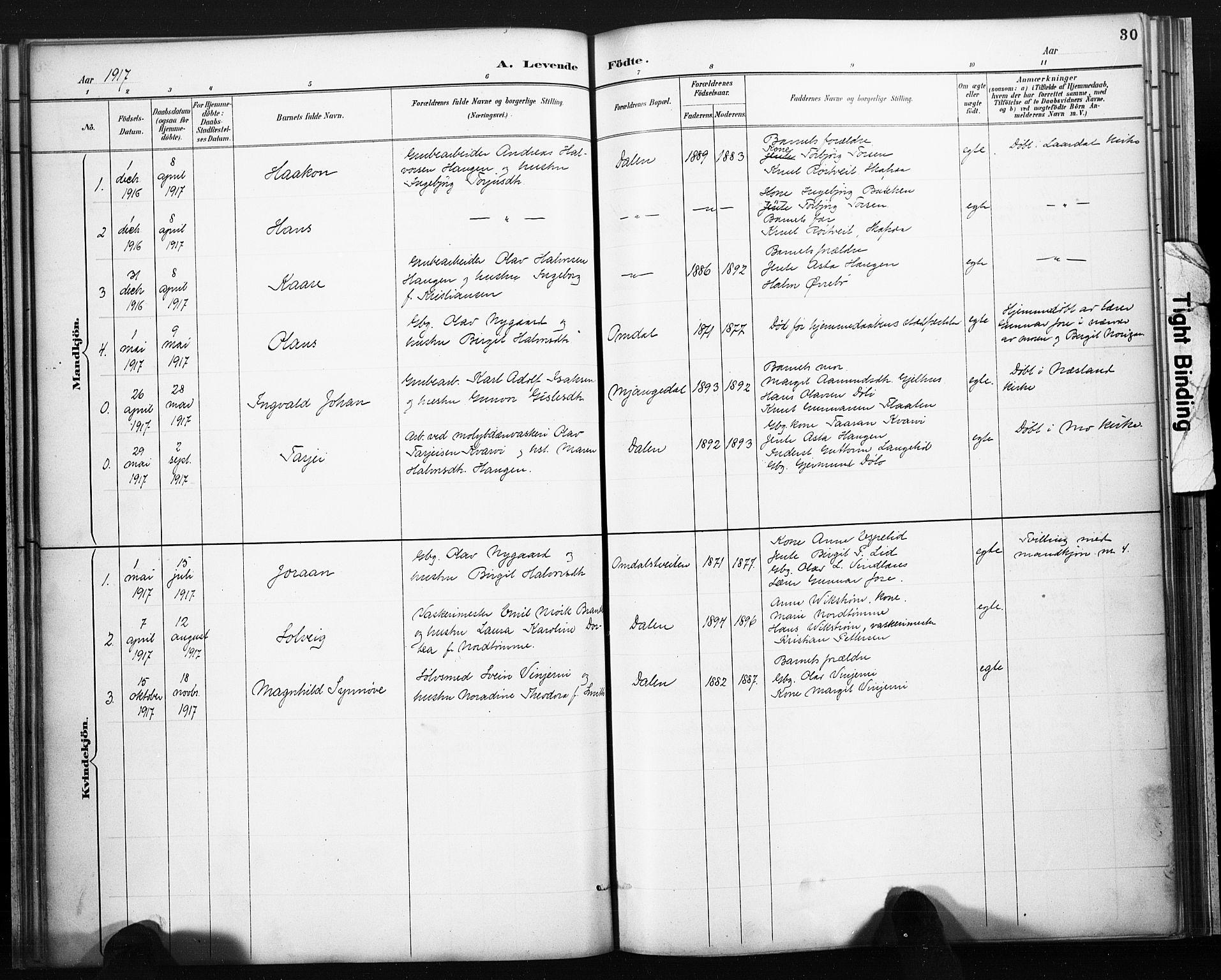 SAKO, Lårdal kirkebøker, F/Fb/L0002: Ministerialbok nr. II 2, 1887-1918, s. 30