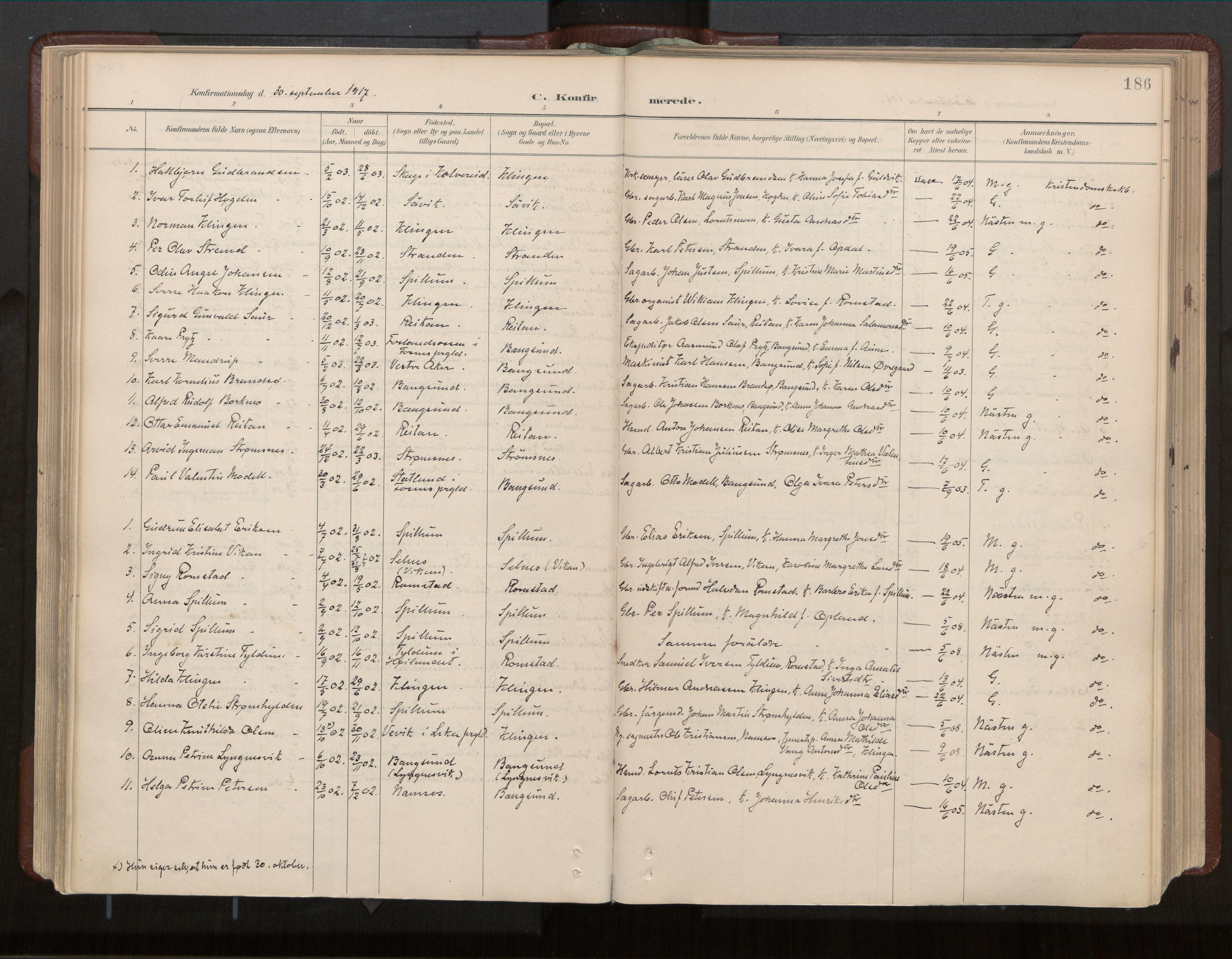 SAT, Ministerialprotokoller, klokkerbøker og fødselsregistre - Nord-Trøndelag, 770/L0589: Ministerialbok nr. 770A03, 1887-1929, s. 186