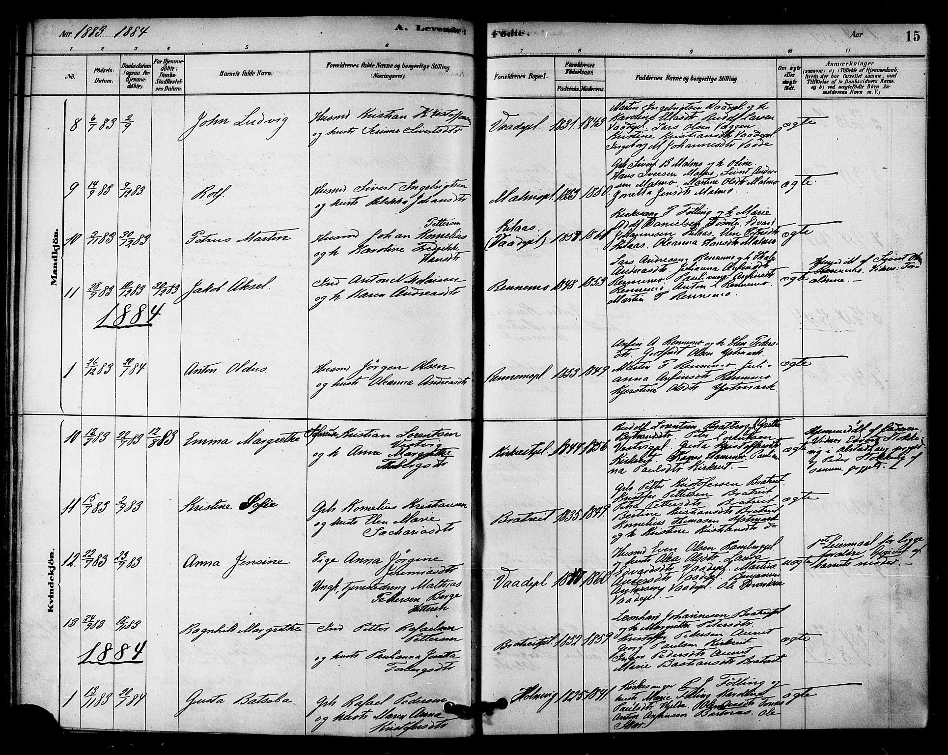 SAT, Ministerialprotokoller, klokkerbøker og fødselsregistre - Nord-Trøndelag, 745/L0429: Ministerialbok nr. 745A01, 1878-1894, s. 15