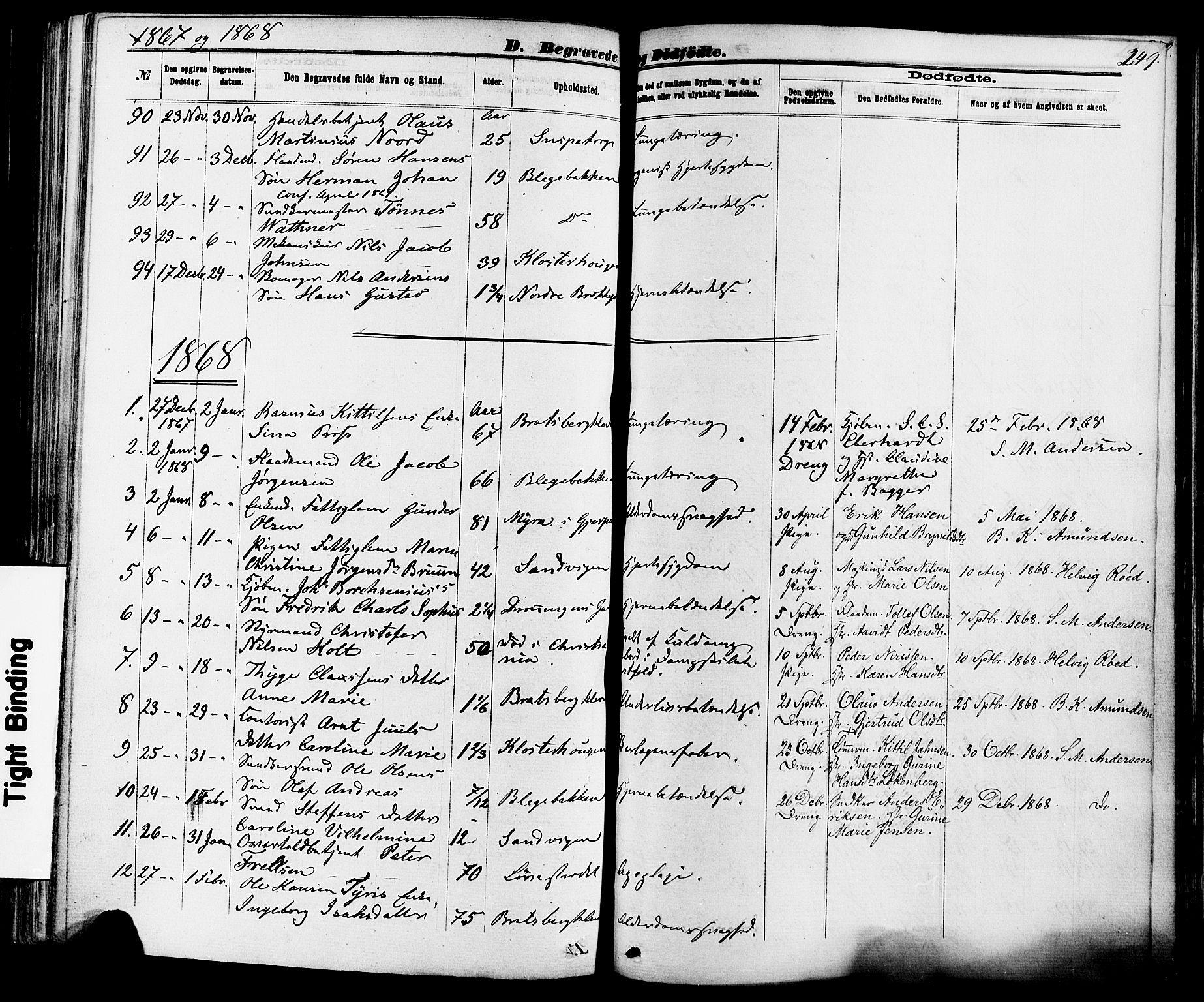 SAKO, Skien kirkebøker, F/Fa/L0008: Ministerialbok nr. 8, 1866-1877, s. 249