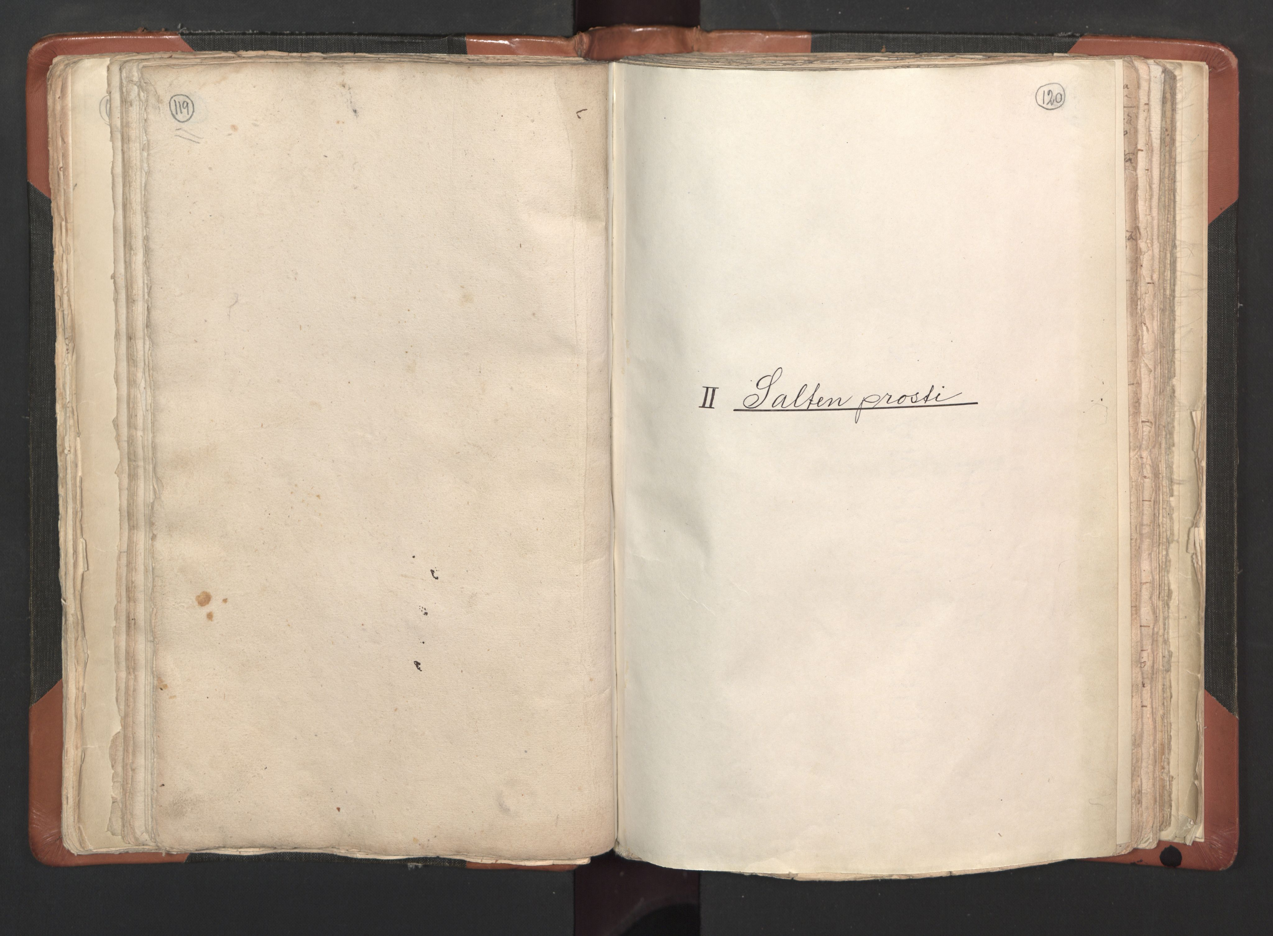 RA, Sogneprestenes manntall 1664-1666, nr. 35: Helgeland prosti og Salten prosti, 1664-1666, s. 119-120