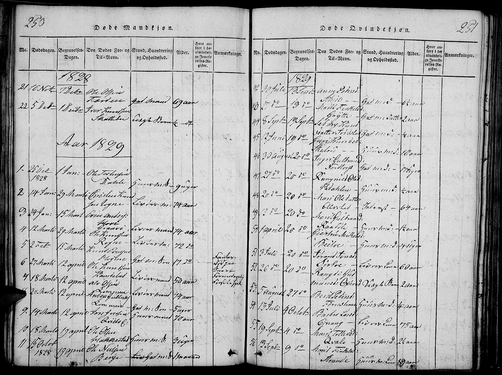 SAH, Slidre prestekontor, Ministerialbok nr. 2, 1814-1830, s. 250-251