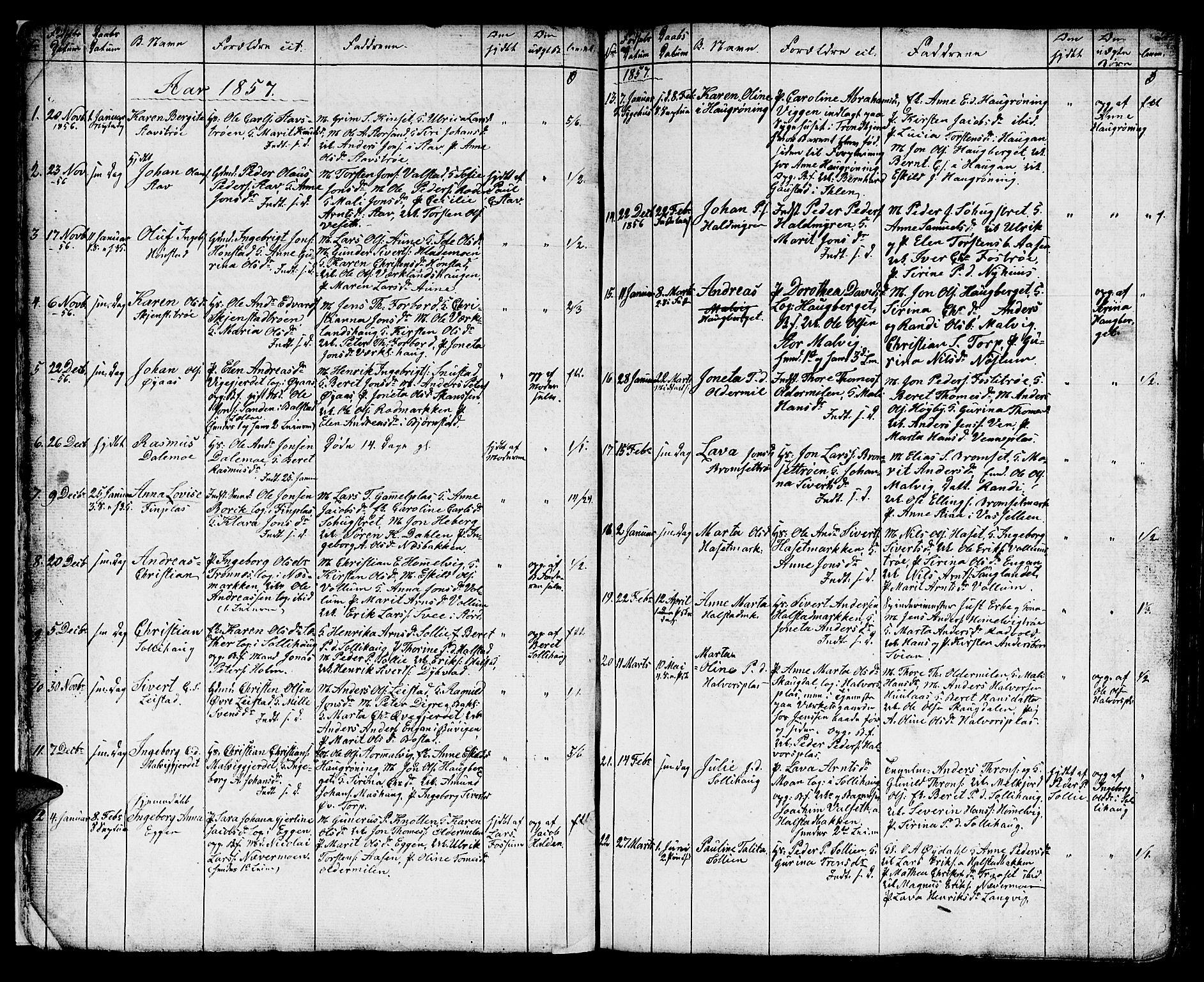 SAT, Ministerialprotokoller, klokkerbøker og fødselsregistre - Sør-Trøndelag, 616/L0422: Klokkerbok nr. 616C05, 1850-1888, s. 17
