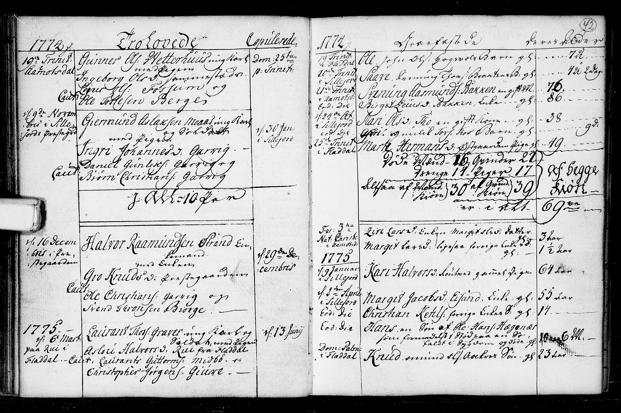 SAKO, Seljord kirkebøker, F/Fa/L0008: Ministerialbok nr. I 8, 1755-1814, s. 42