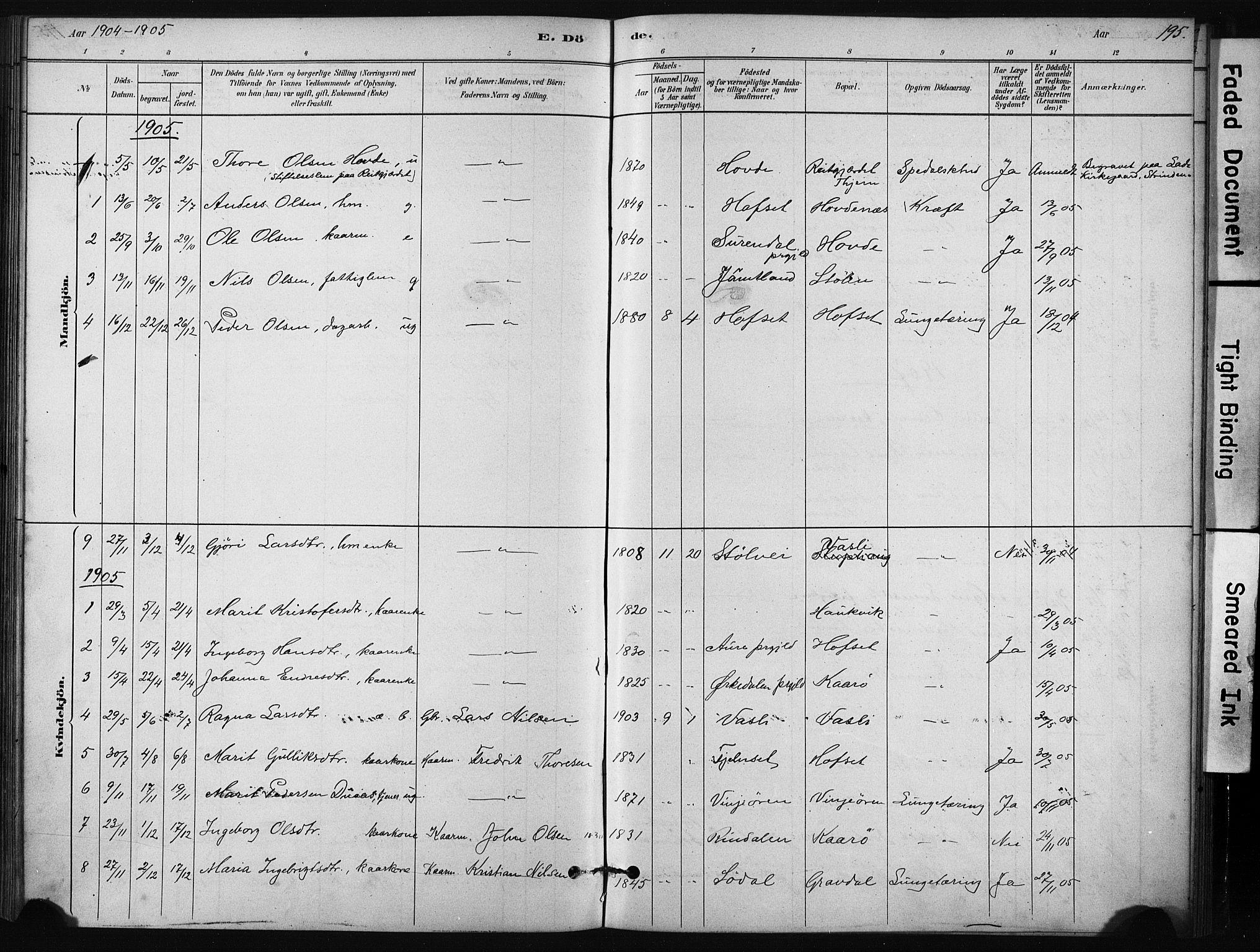 SAT, Ministerialprotokoller, klokkerbøker og fødselsregistre - Sør-Trøndelag, 631/L0512: Ministerialbok nr. 631A01, 1879-1912, s. 195