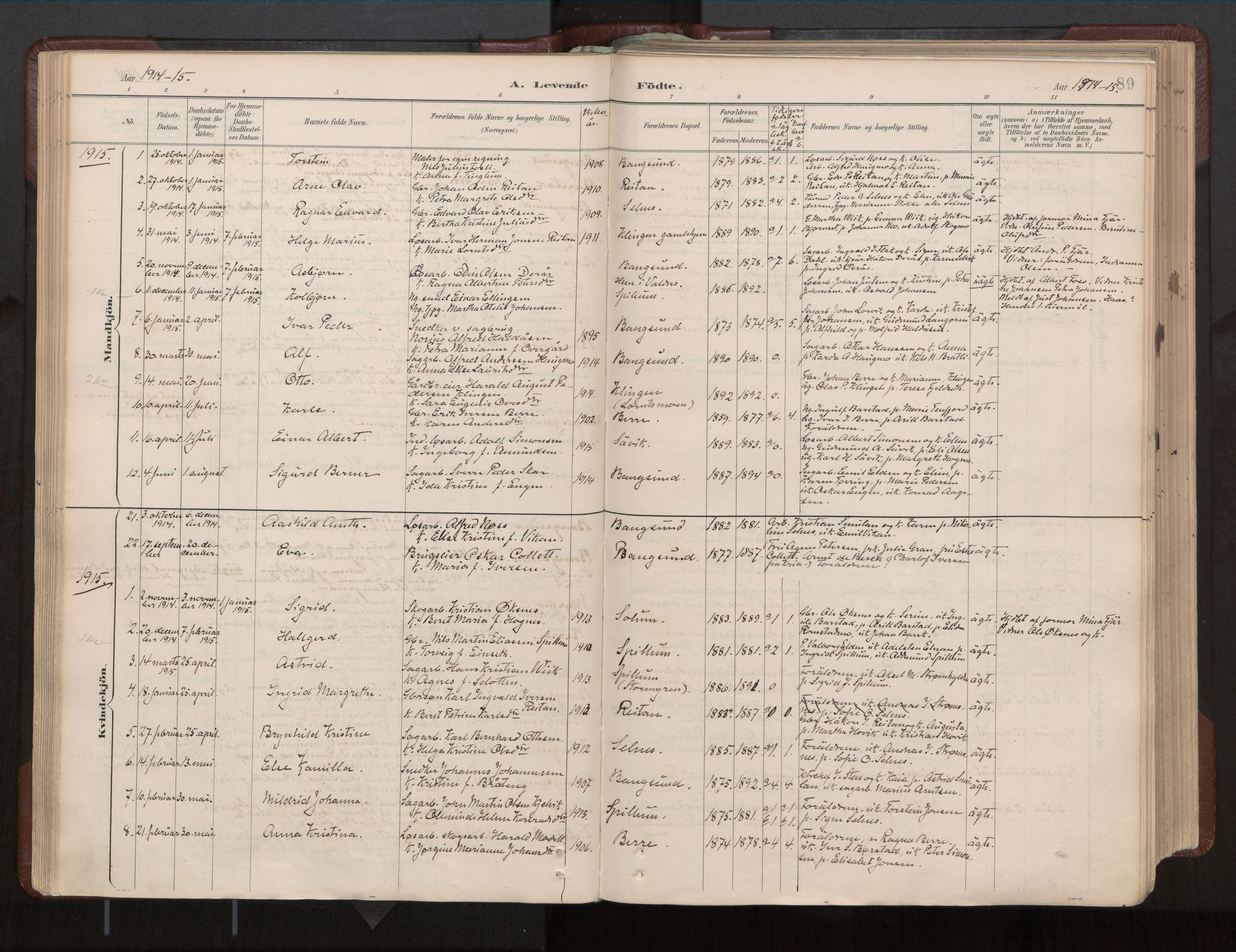 SAT, Ministerialprotokoller, klokkerbøker og fødselsregistre - Nord-Trøndelag, 770/L0589: Ministerialbok nr. 770A03, 1887-1929, s. 89