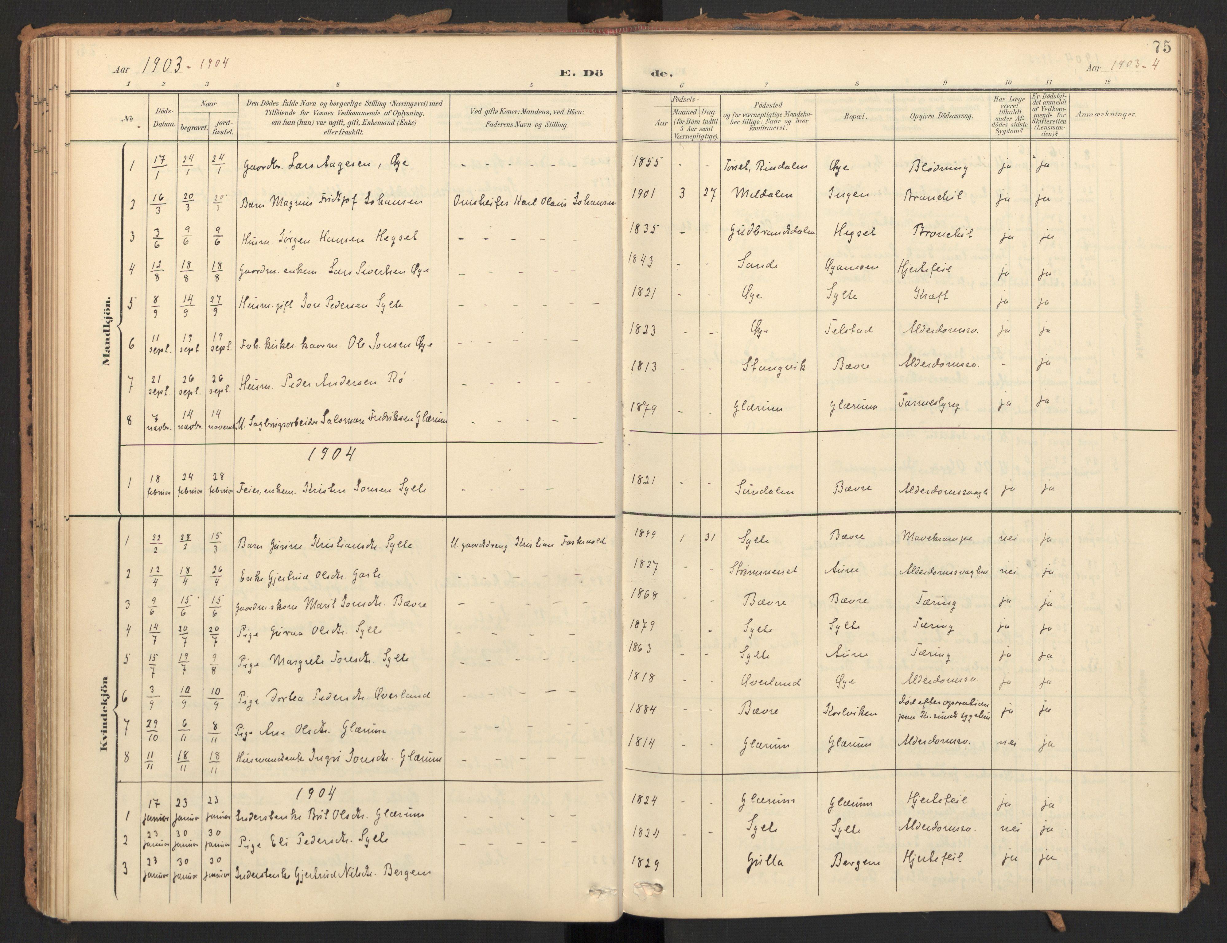 SAT, Ministerialprotokoller, klokkerbøker og fødselsregistre - Møre og Romsdal, 595/L1048: Ministerialbok nr. 595A10, 1900-1917, s. 75