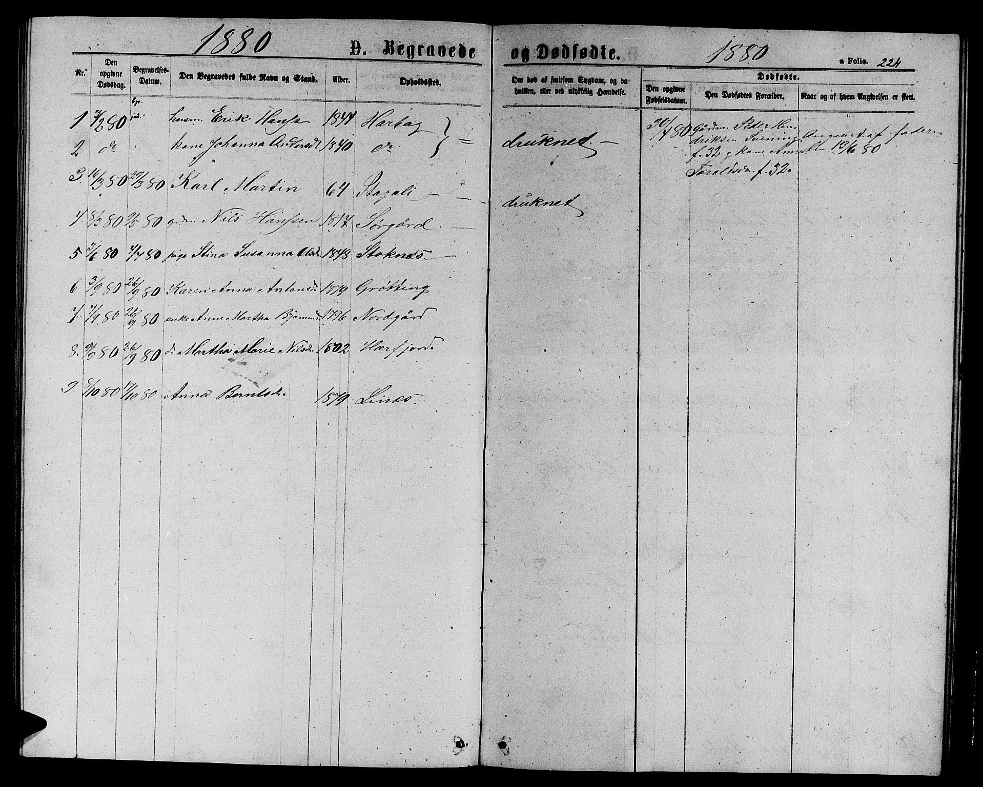 SAT, Ministerialprotokoller, klokkerbøker og fødselsregistre - Sør-Trøndelag, 656/L0695: Klokkerbok nr. 656C01, 1867-1889, s. 224