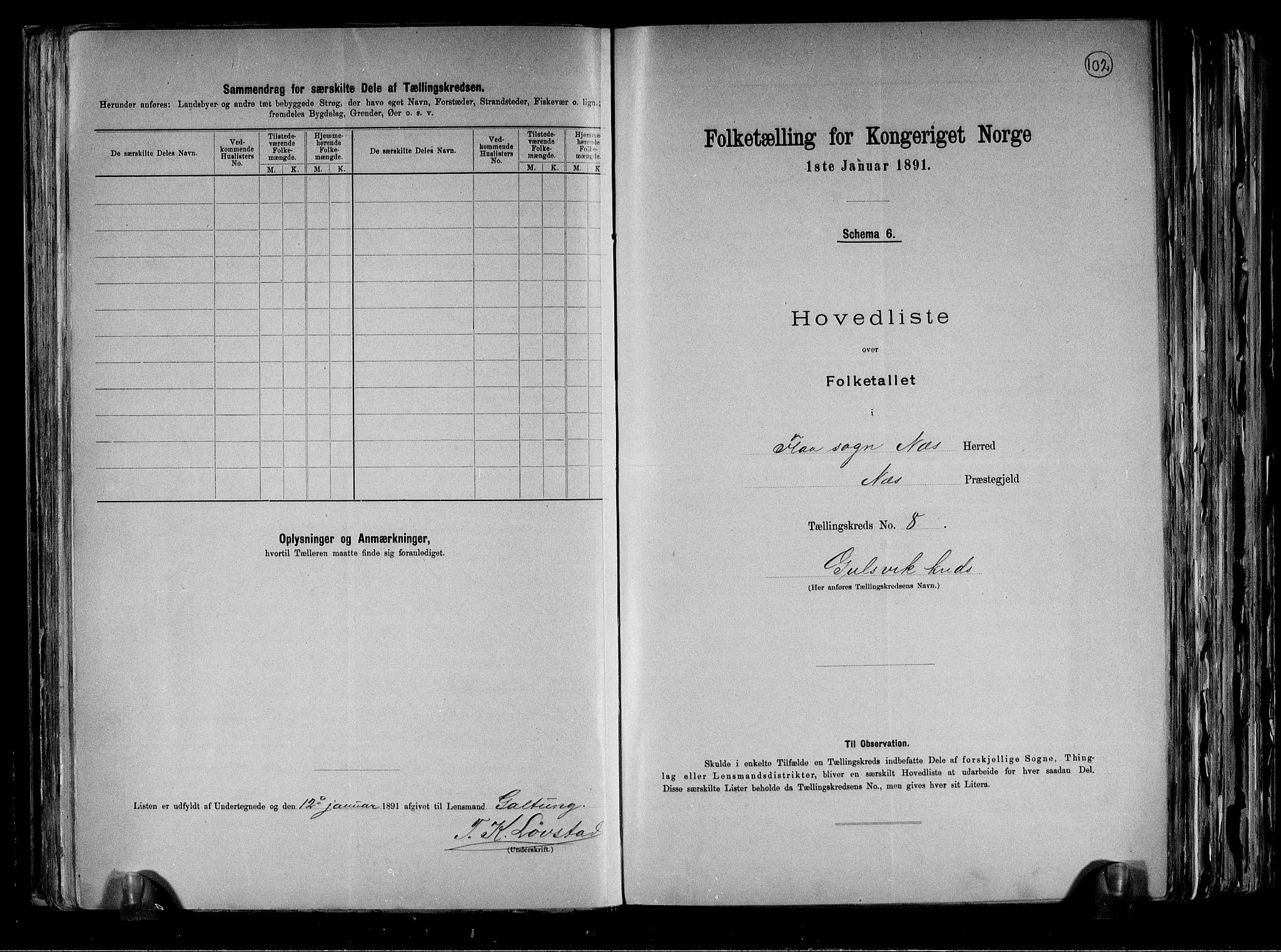 RA, Folketelling 1891 for 0616 Nes herred, 1891, s. 22