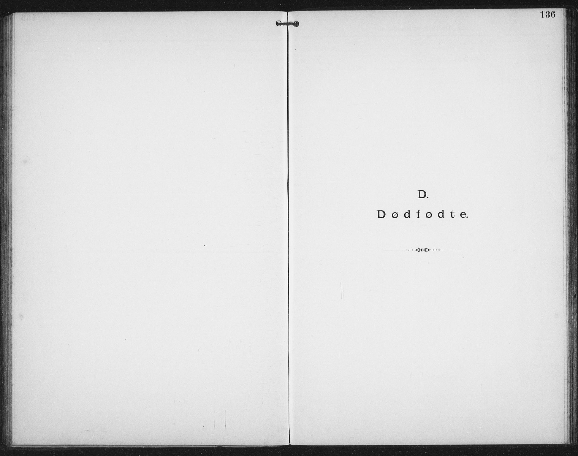SAT, Ministerialprotokoller, klokkerbøker og fødselsregistre - Nordland, 881/L1174: Dissenterprotokoll nr. 881D01, 1891-1933, s. 136
